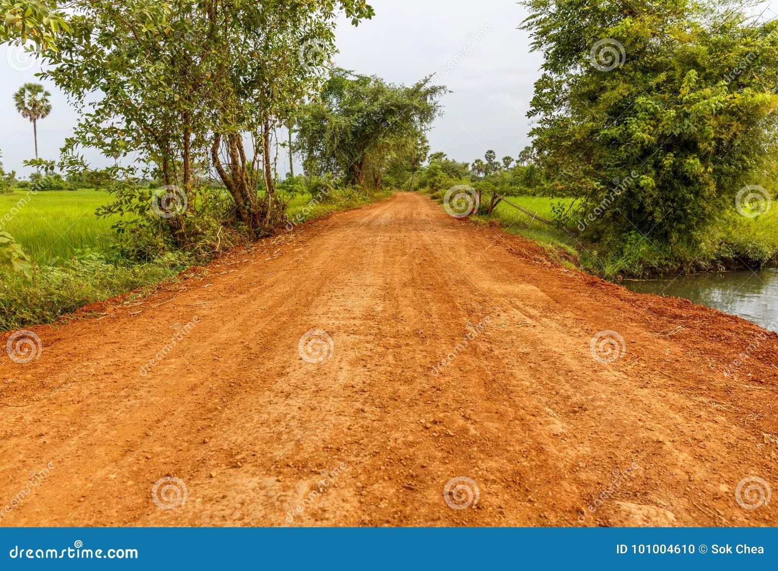 Czerwona droga gruntowa Iść przez zieleni pola w wsi