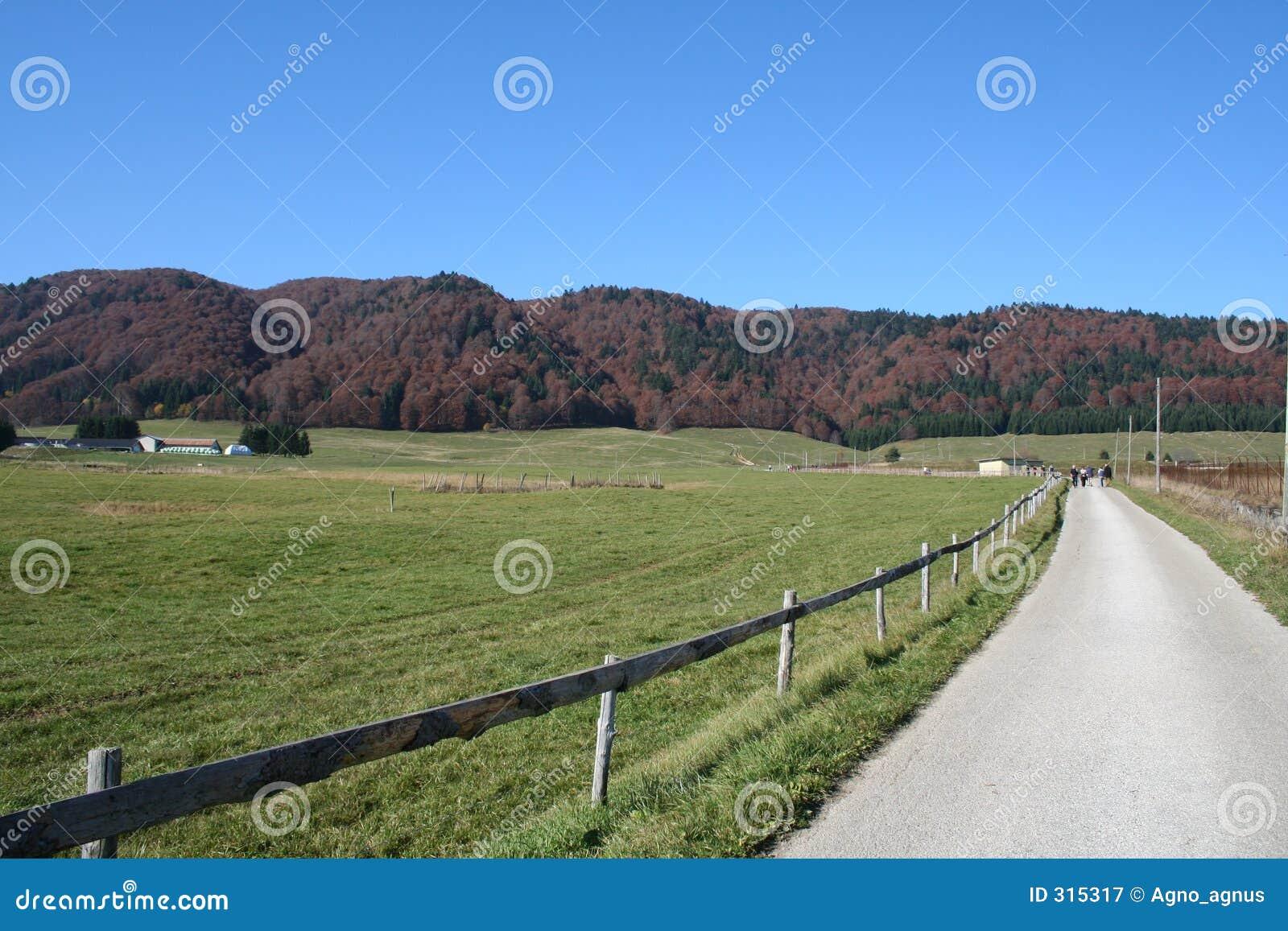 Czerwona hill road