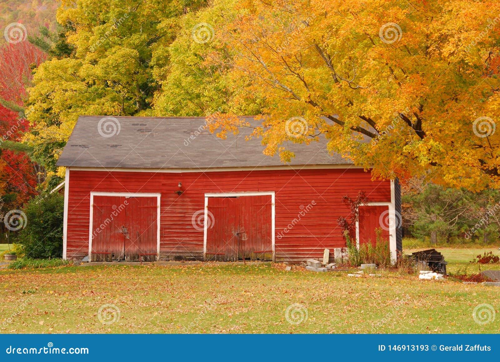 Czerwona Nowa Anglia stajnia w jesieni z kolorowymi liśćmi