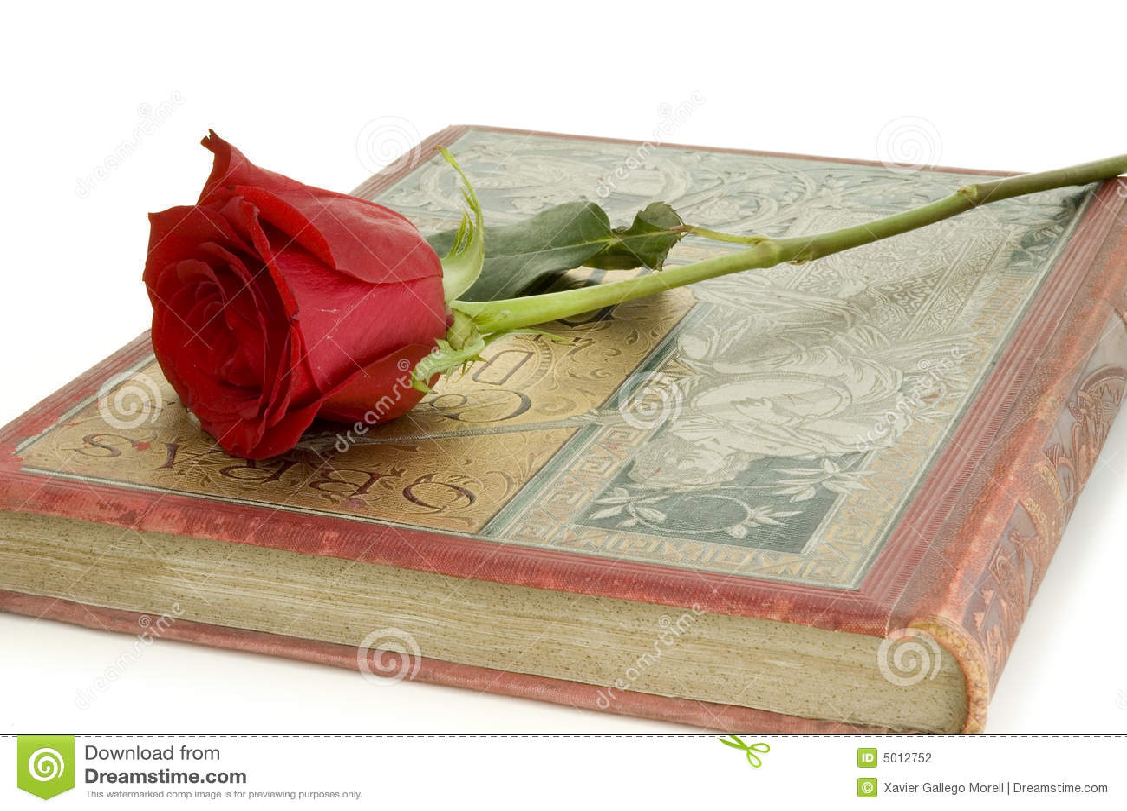 Czerwona Róża Księgowa Zdjęcie Stock Obraz Złożonej Z Last