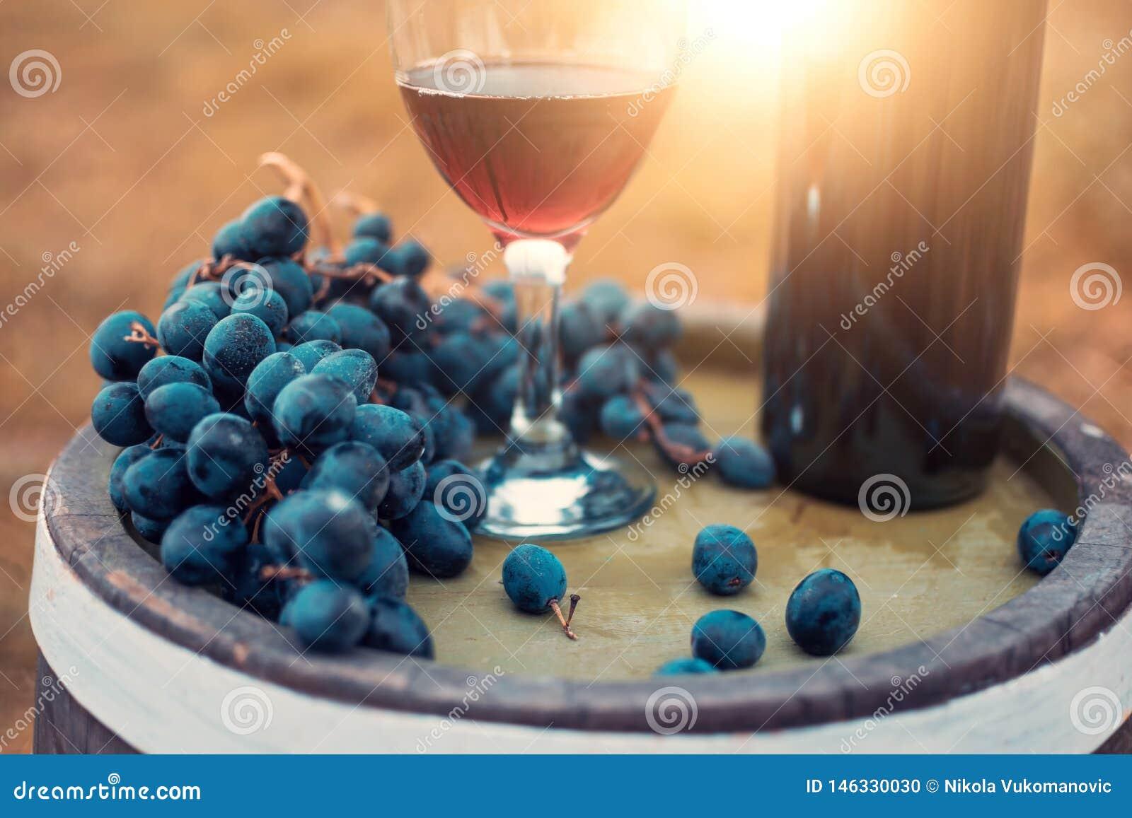 Czerwone wino i ?wiezi winogrona