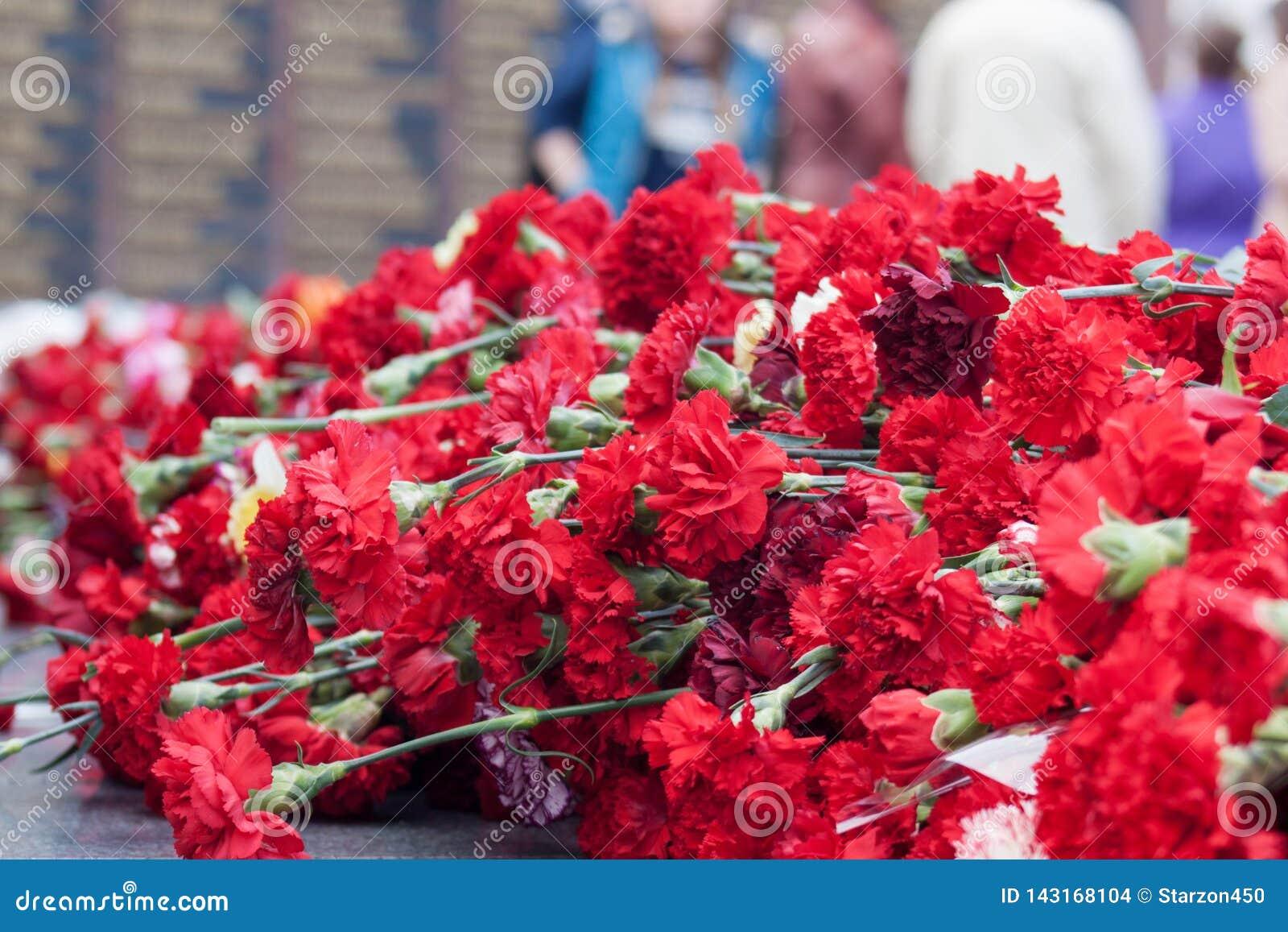 Czerwoni goździków kwiaty na pomnika marmurze wsiadają Pomników spadać żołnierze w drugiej wojnie światowej