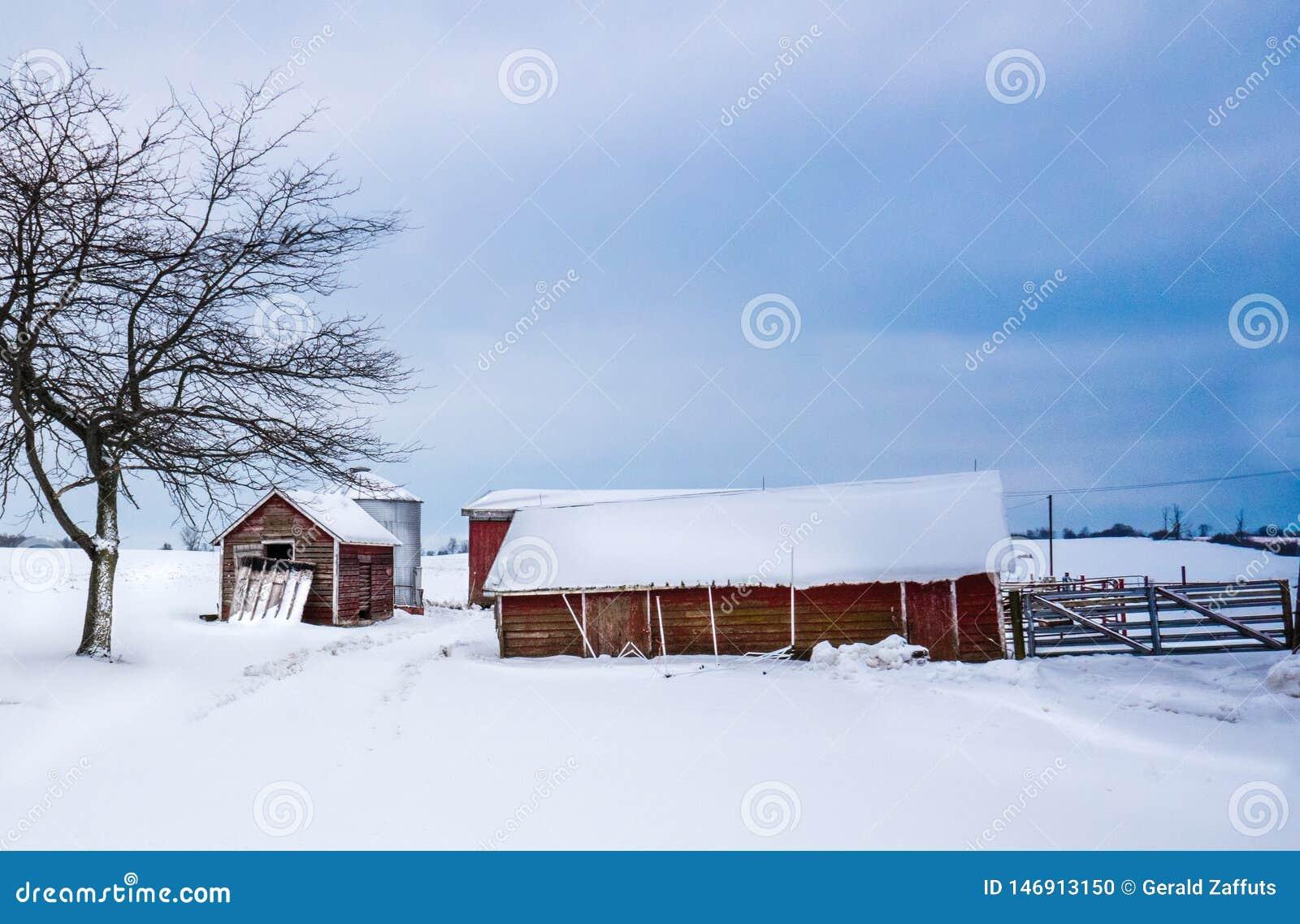 Czerwoni rolni budynki w zimie