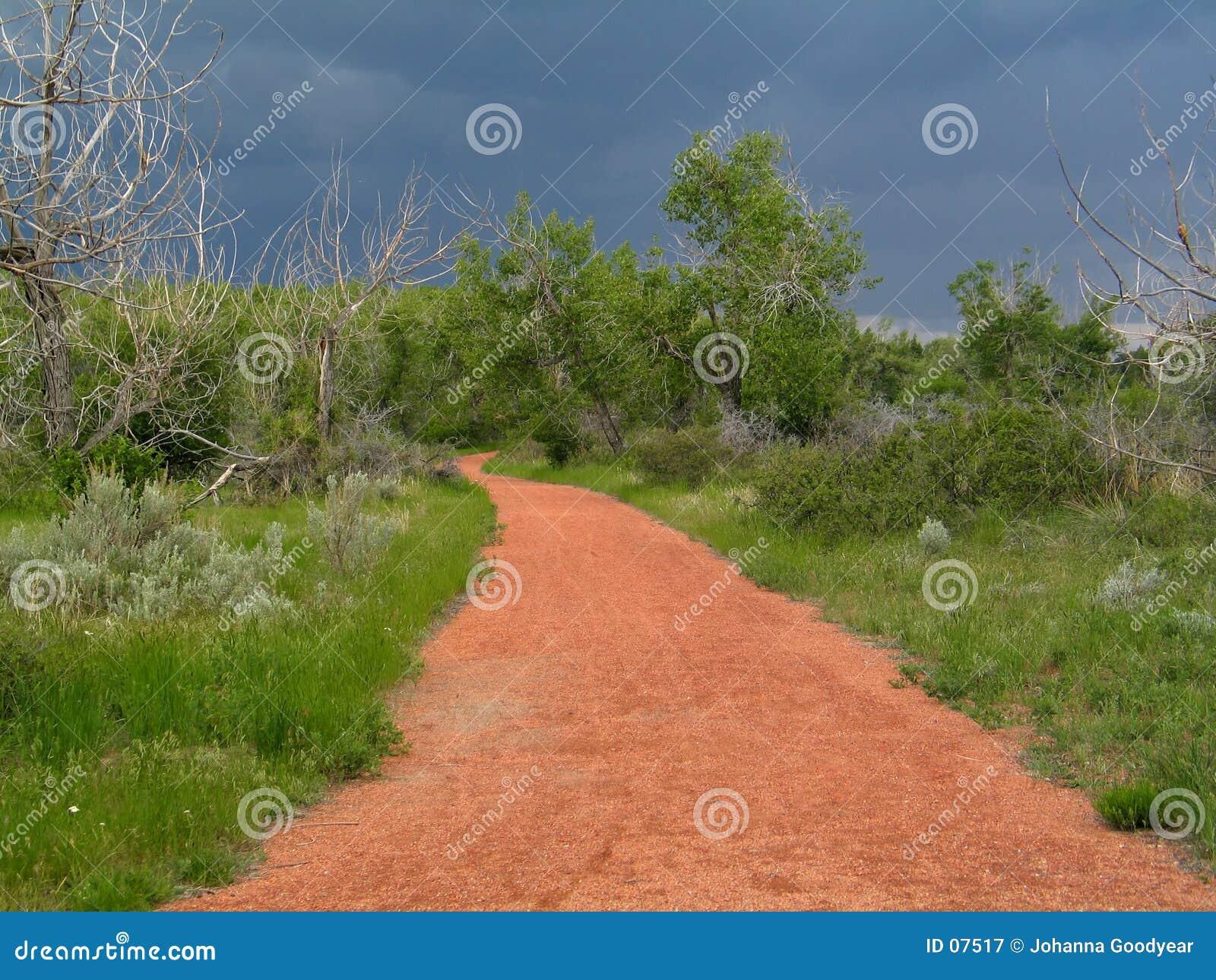 Czerwony ścieżki