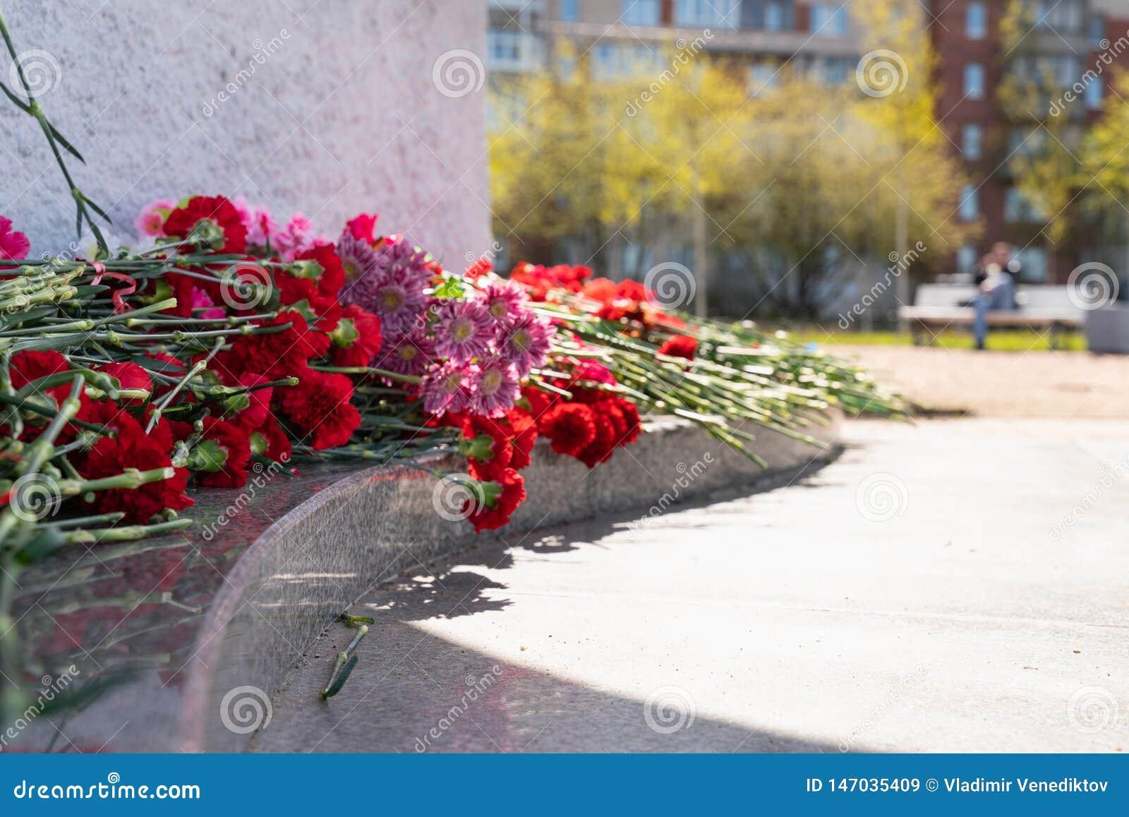 Czerwony go?dzik kwitnie przy pomnik?w spada? ?o?nierzami w drugiej wojnie ?wiatowej