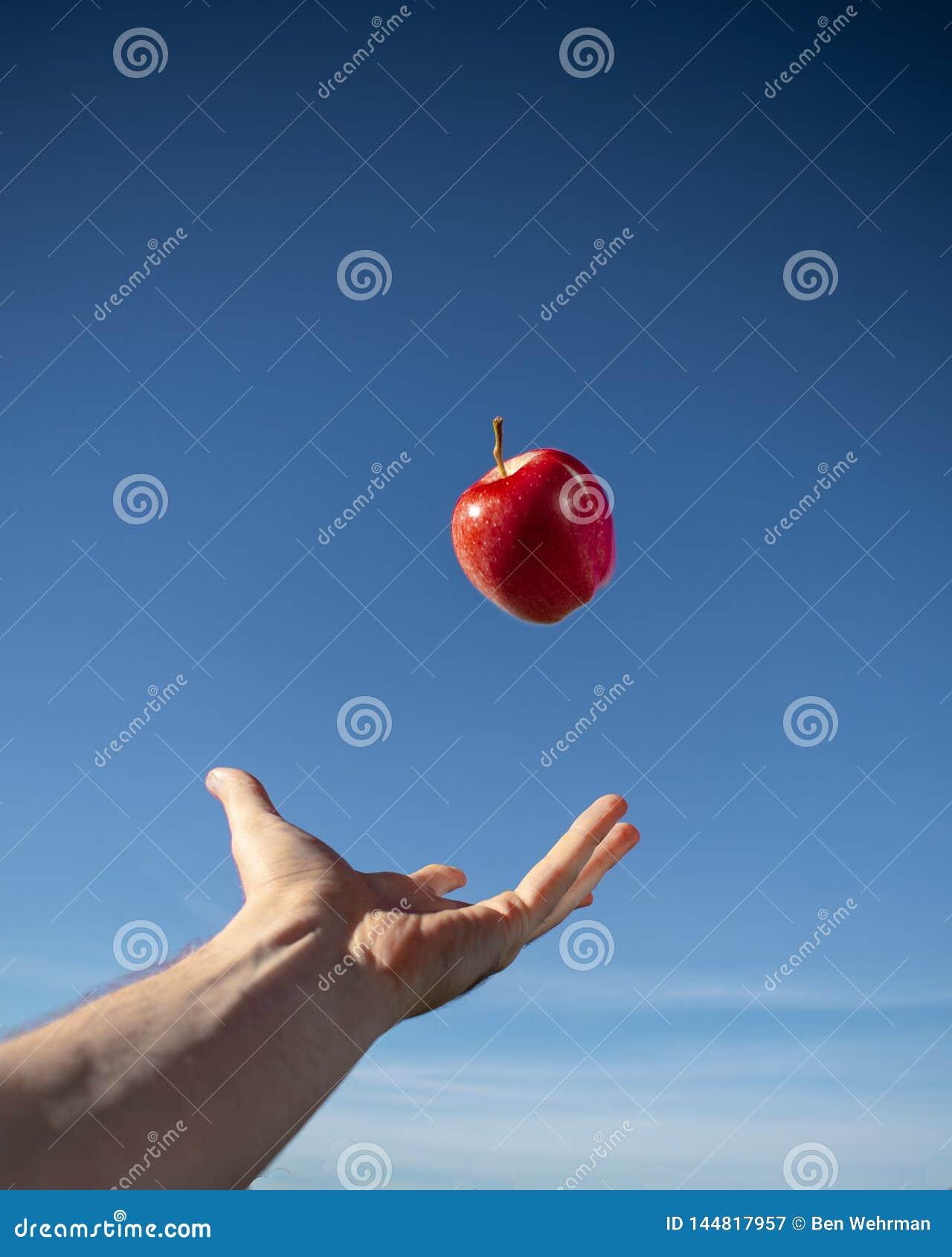 Czerwony Jabłczany Unosić się w powietrzu