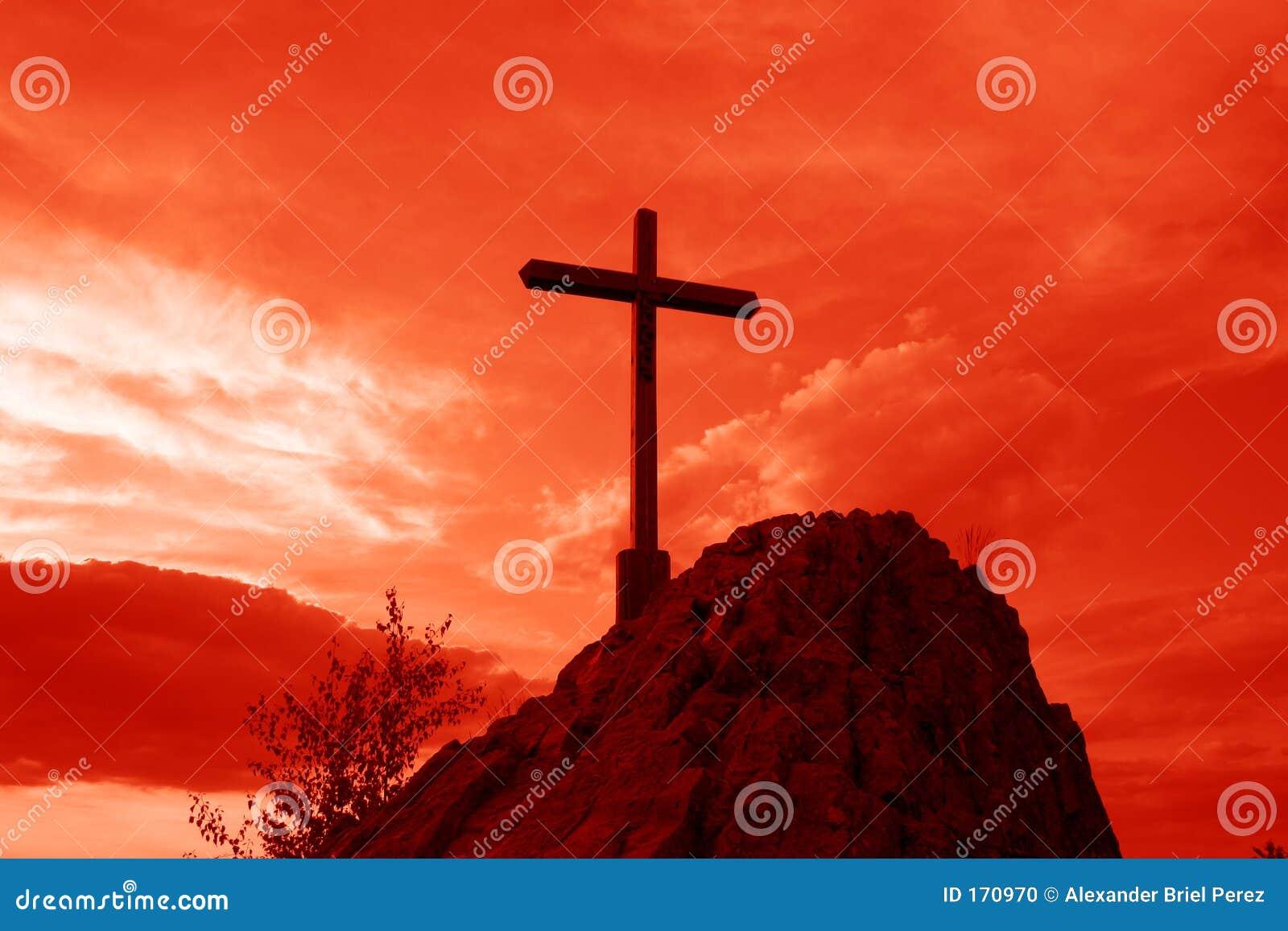 Czerwony krzyżowa