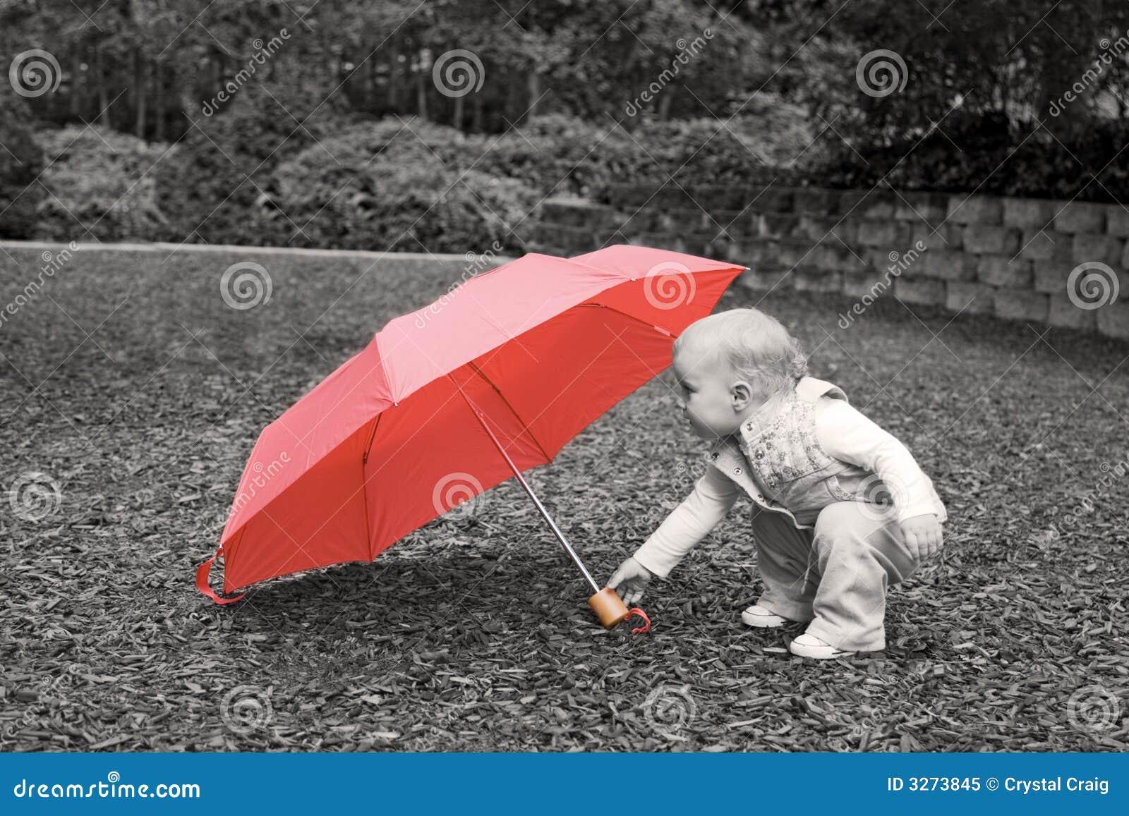 Czerwony parasol berbecia