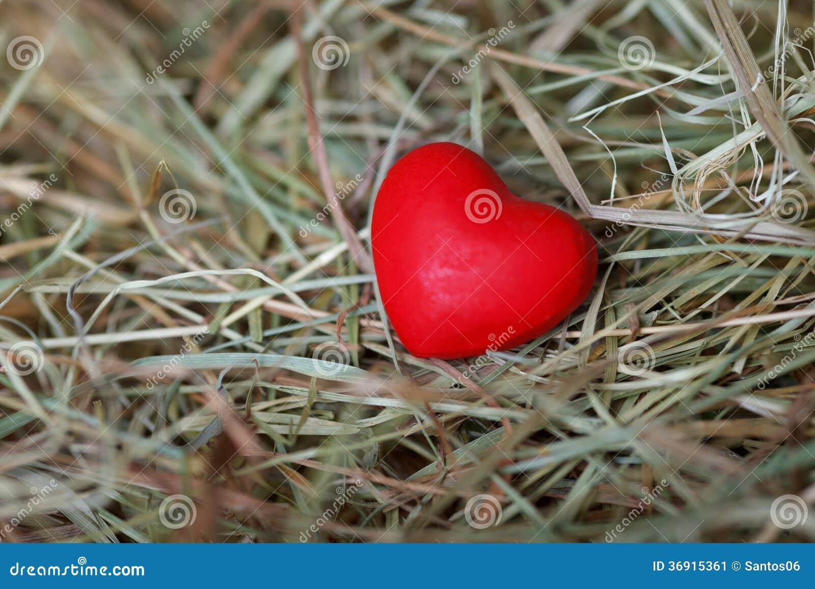 Czerwony serce wśrodku siana