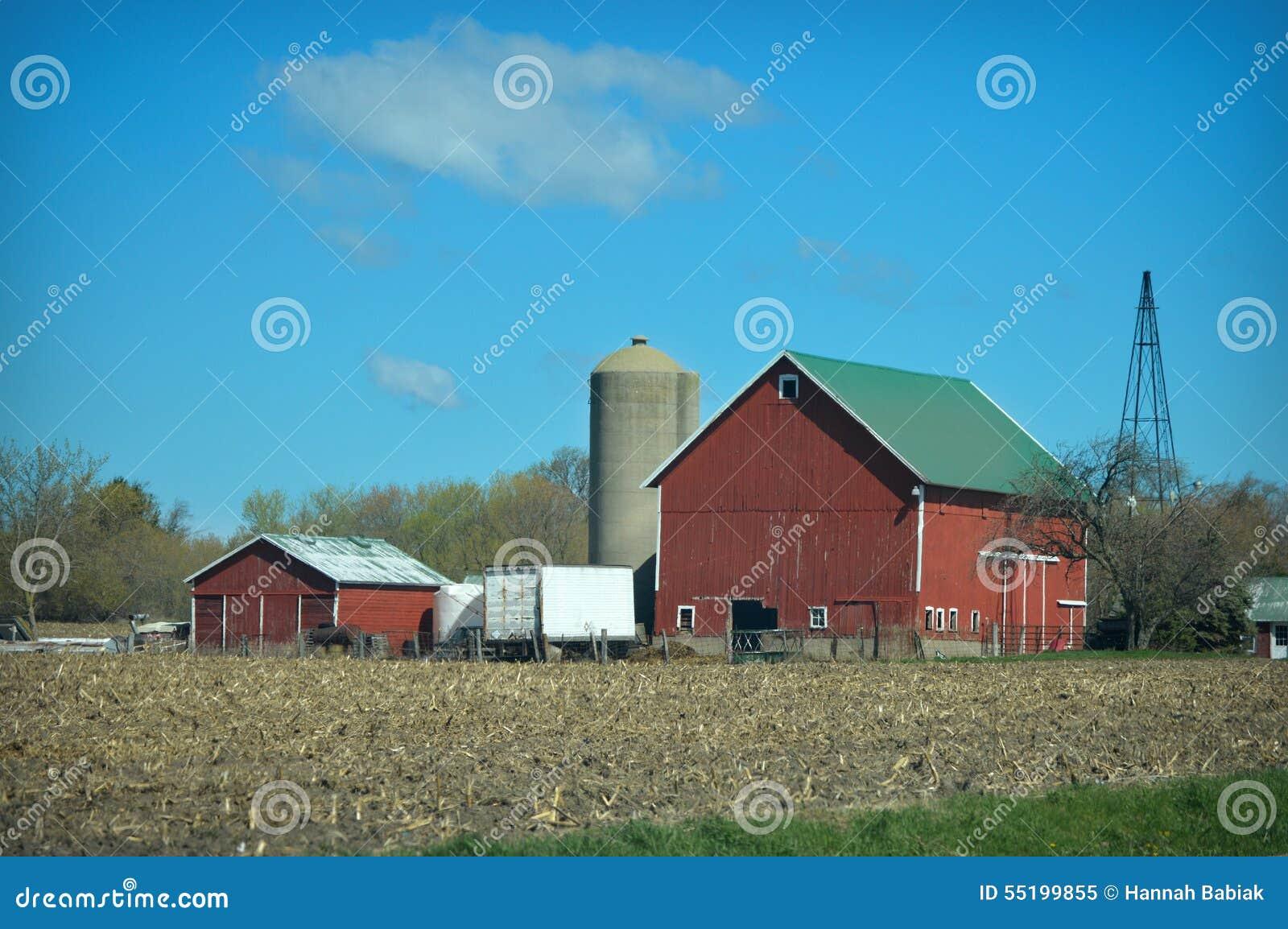 Czerwony Stajni Kukurudzy Pole