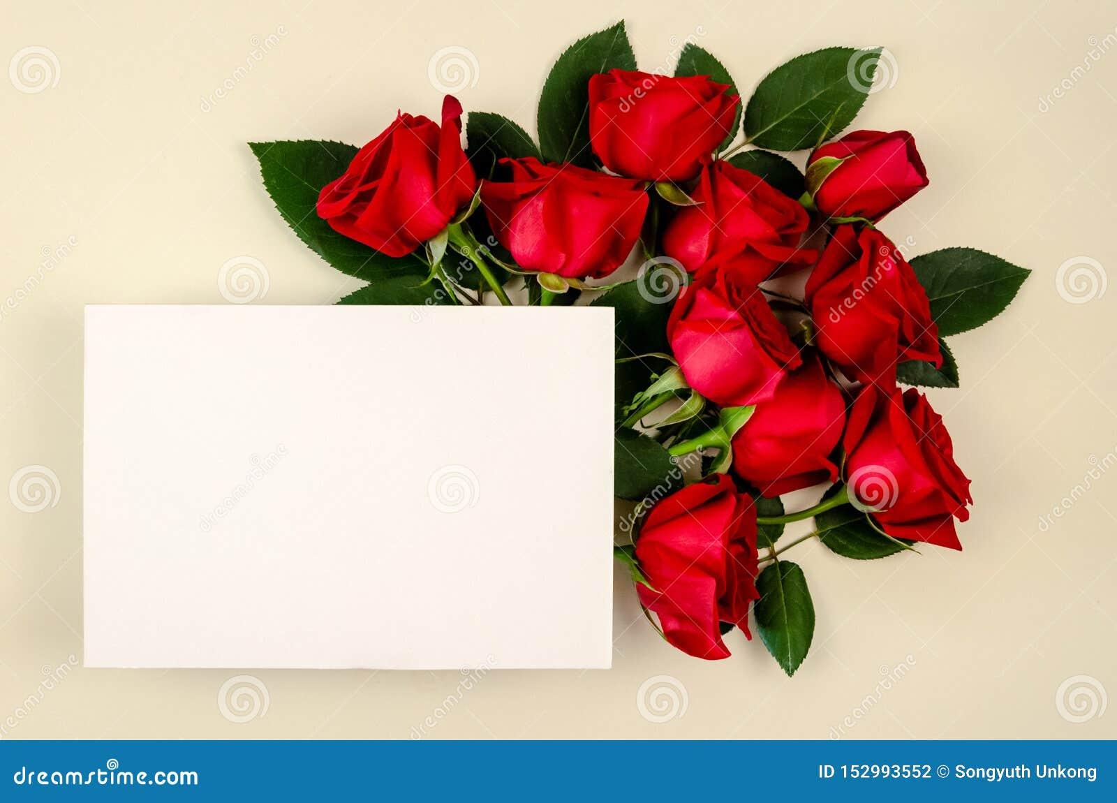 Czerwonych róż bukiet z pustą białej księgi kartą na beżowym koloru tle