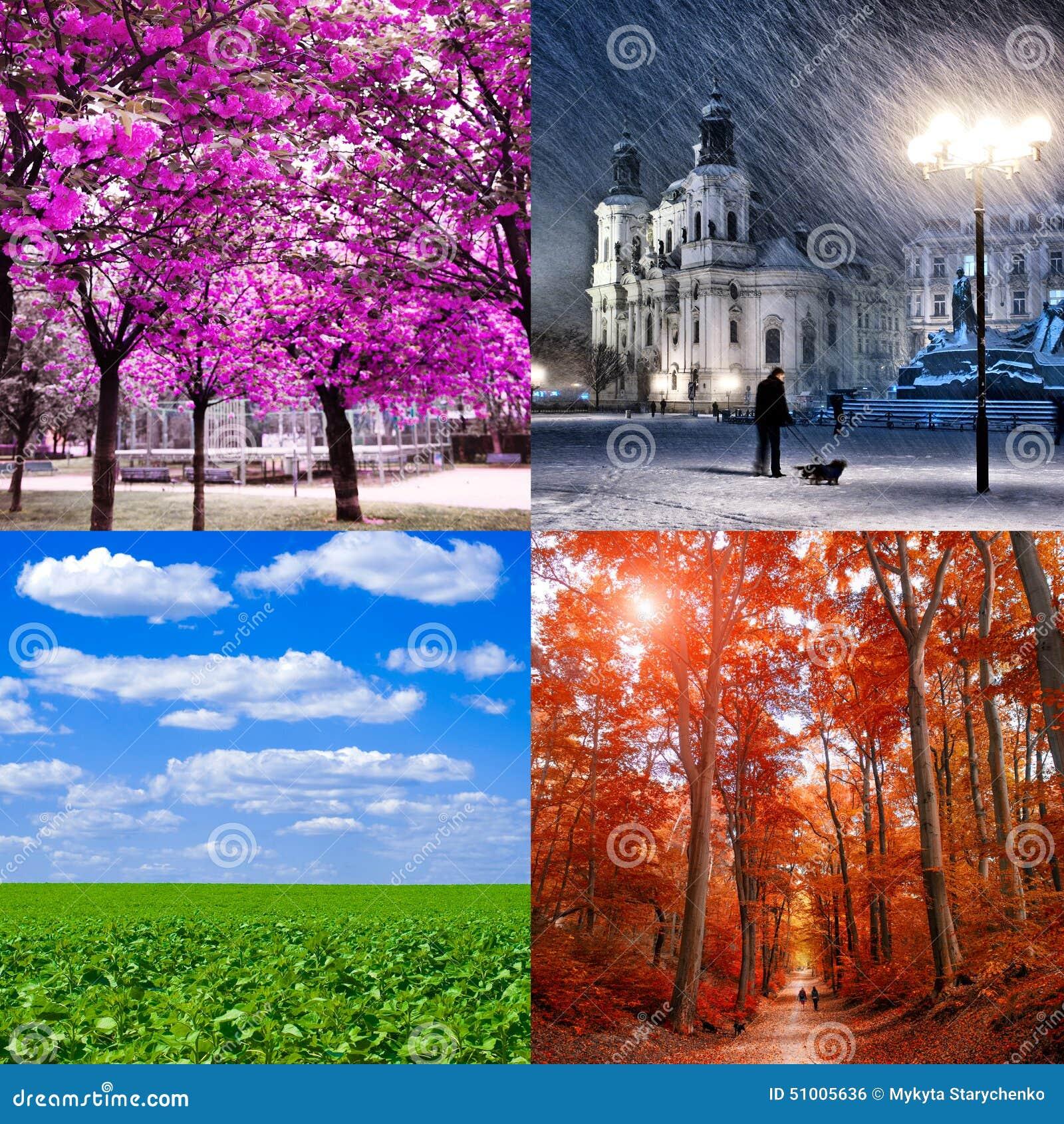 Cztery sezonu odmianowego