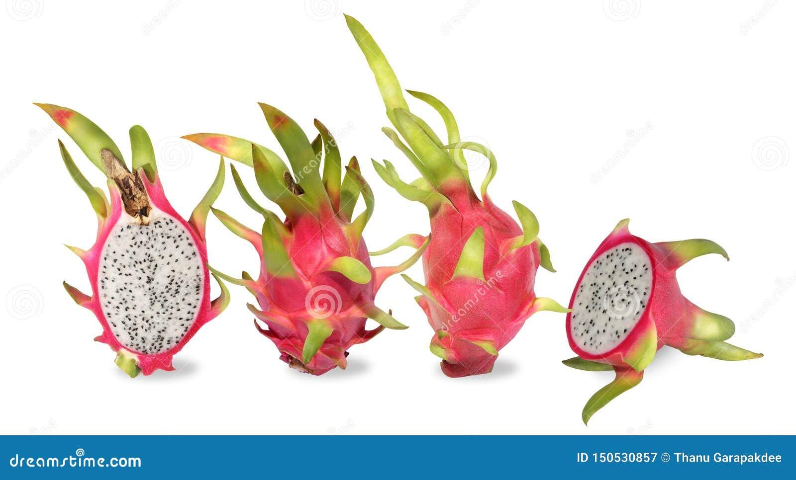 Cztery smoka różowa owoc Fruitage kaktus jest tropikalnym owoc