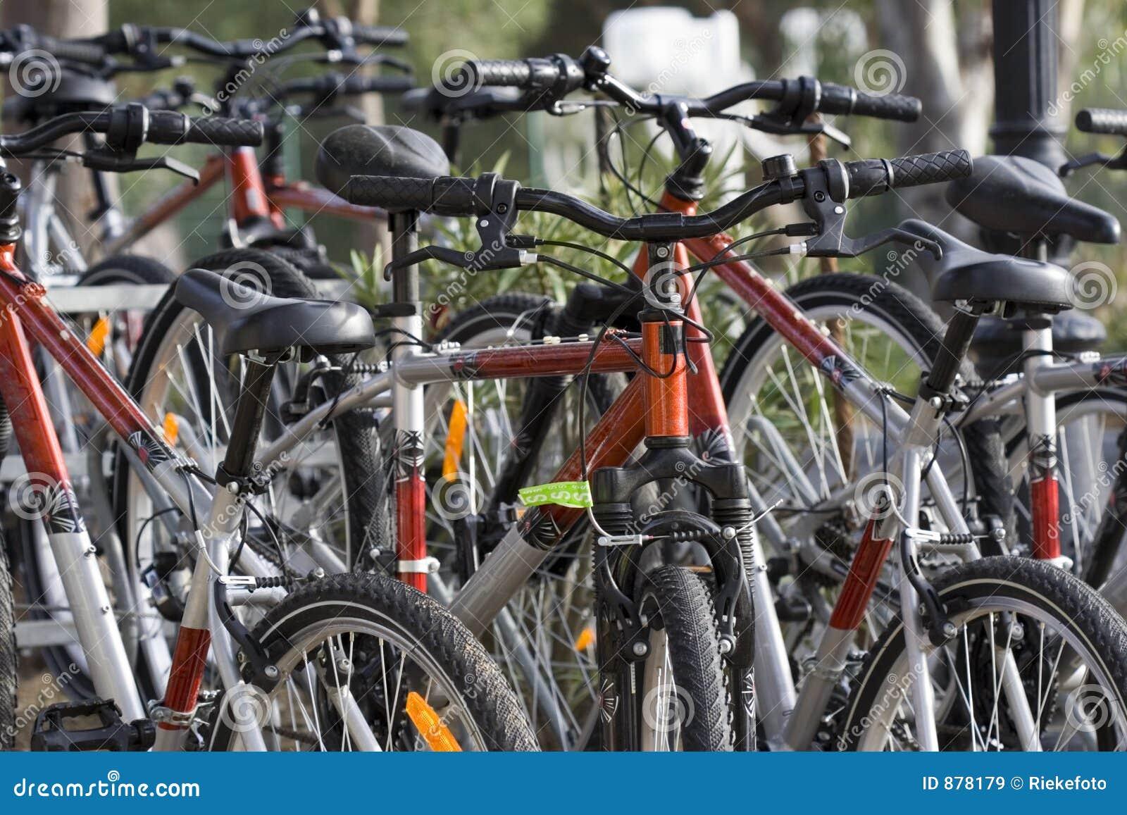 Czynsz roweru
