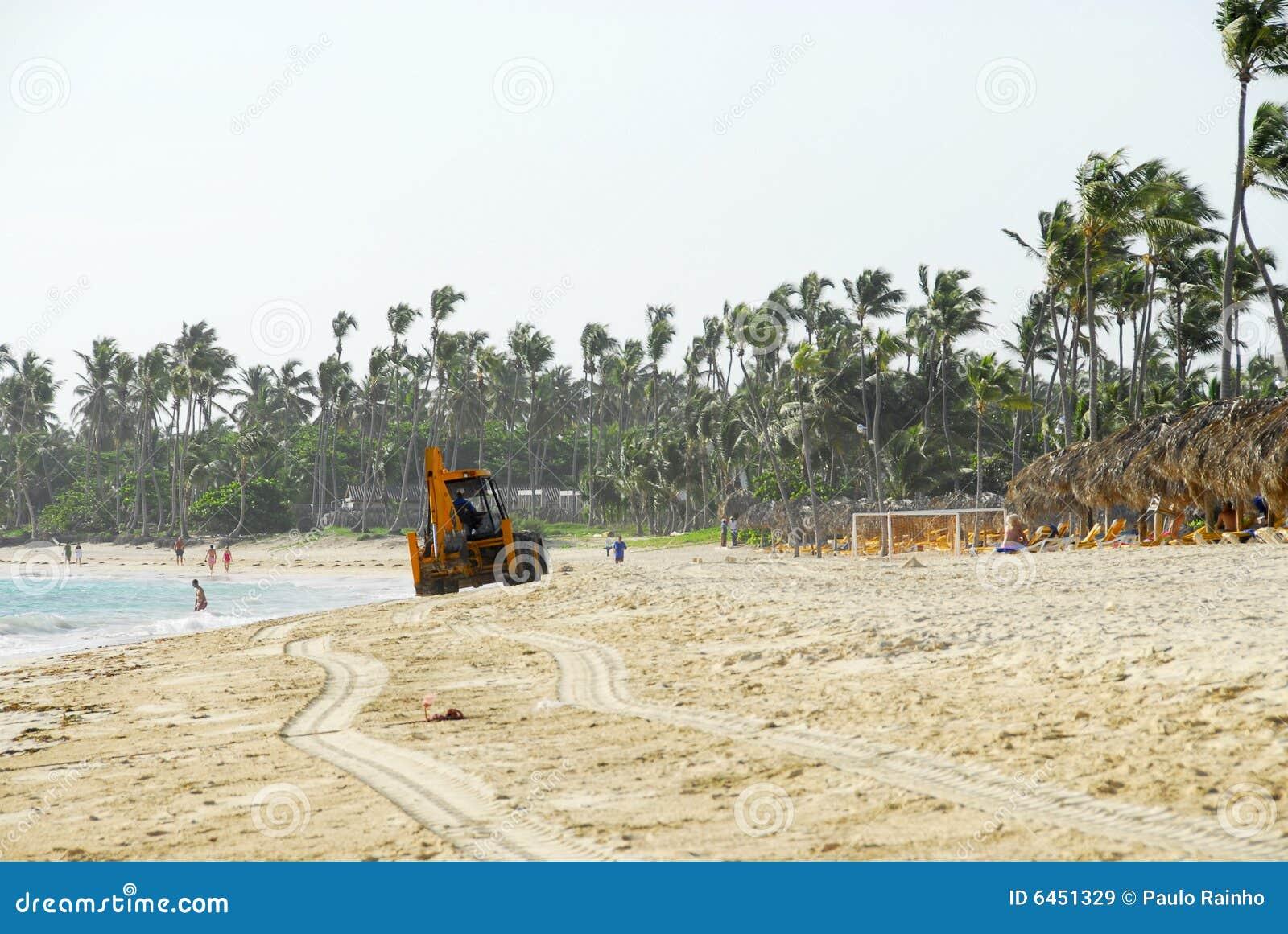 Czyszczenie lasów tropikalnych na plaży