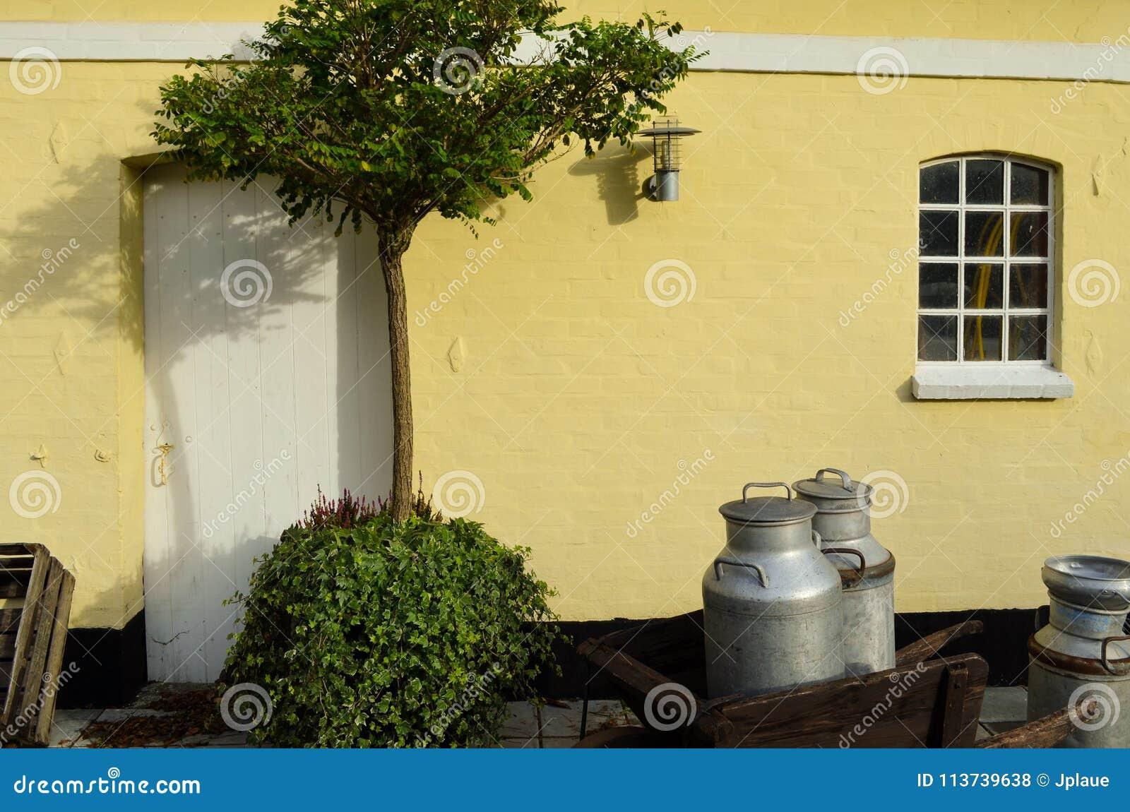 Dänische europäische Hausgarten-Seelandschaft ländlich