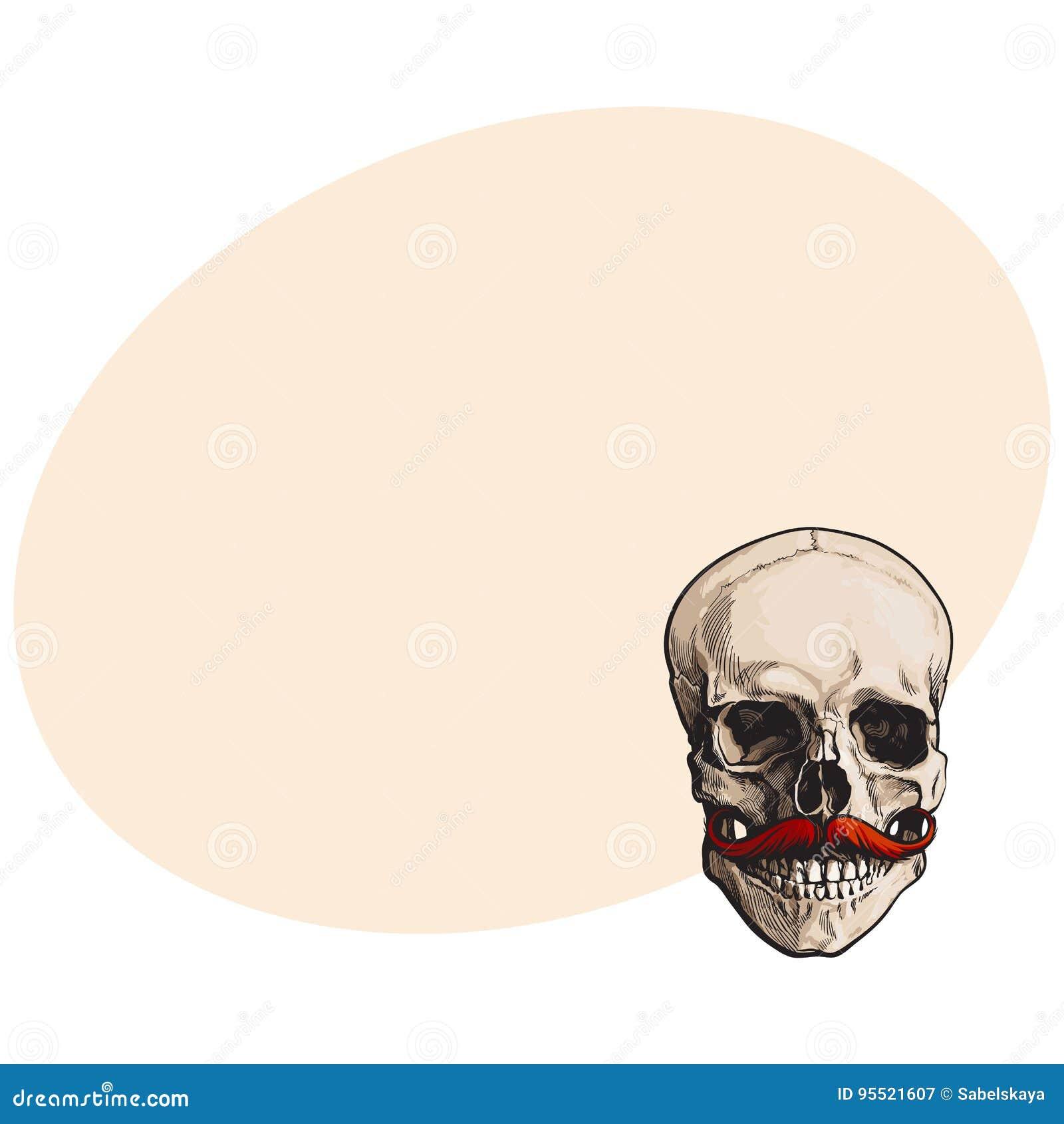 Dé El Cráneo Humano Exhausto Con El Bigote Ascendente Encrespado Del ...