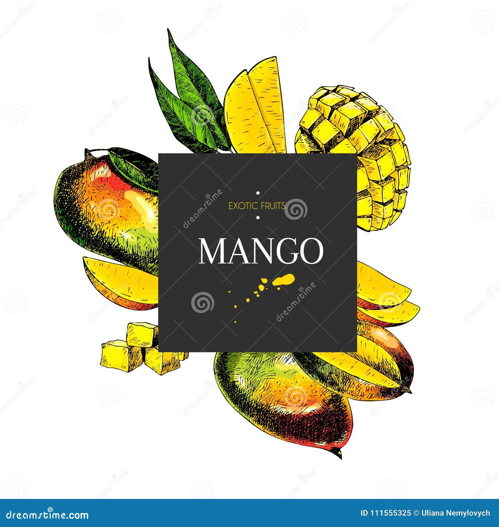 Dé El Mango Exhausto Entero, Cortado, Cubo Con Las Hojas En ...