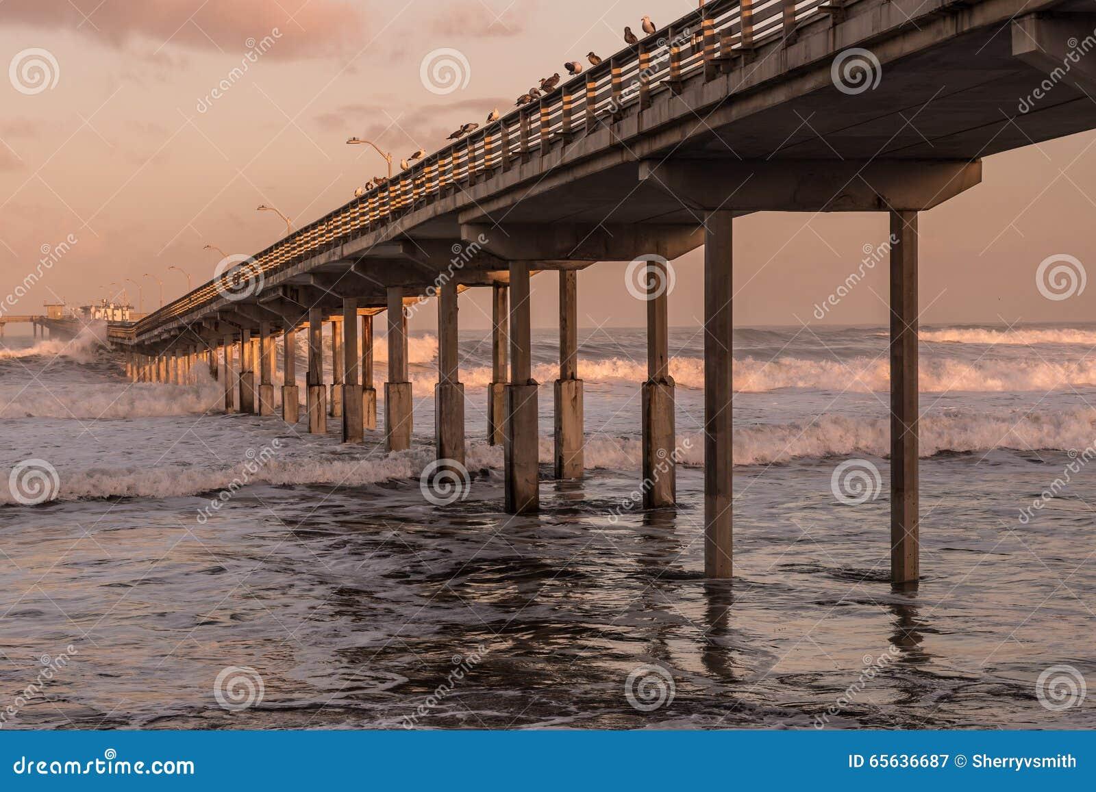 Début de la matinée au pilier de pêche de plage d océan