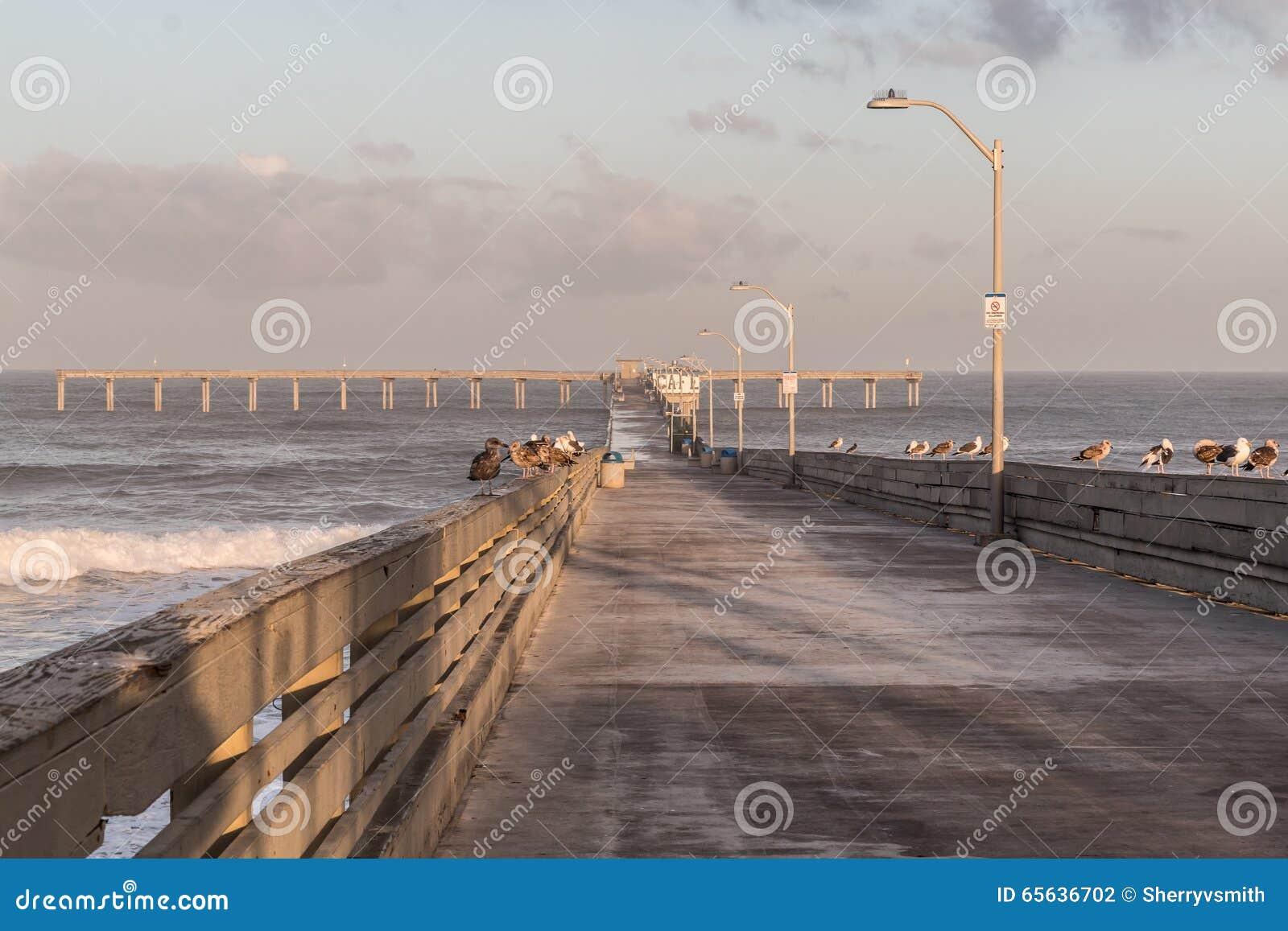 Début de la matinée sur le pilier de pêche de plage d océan