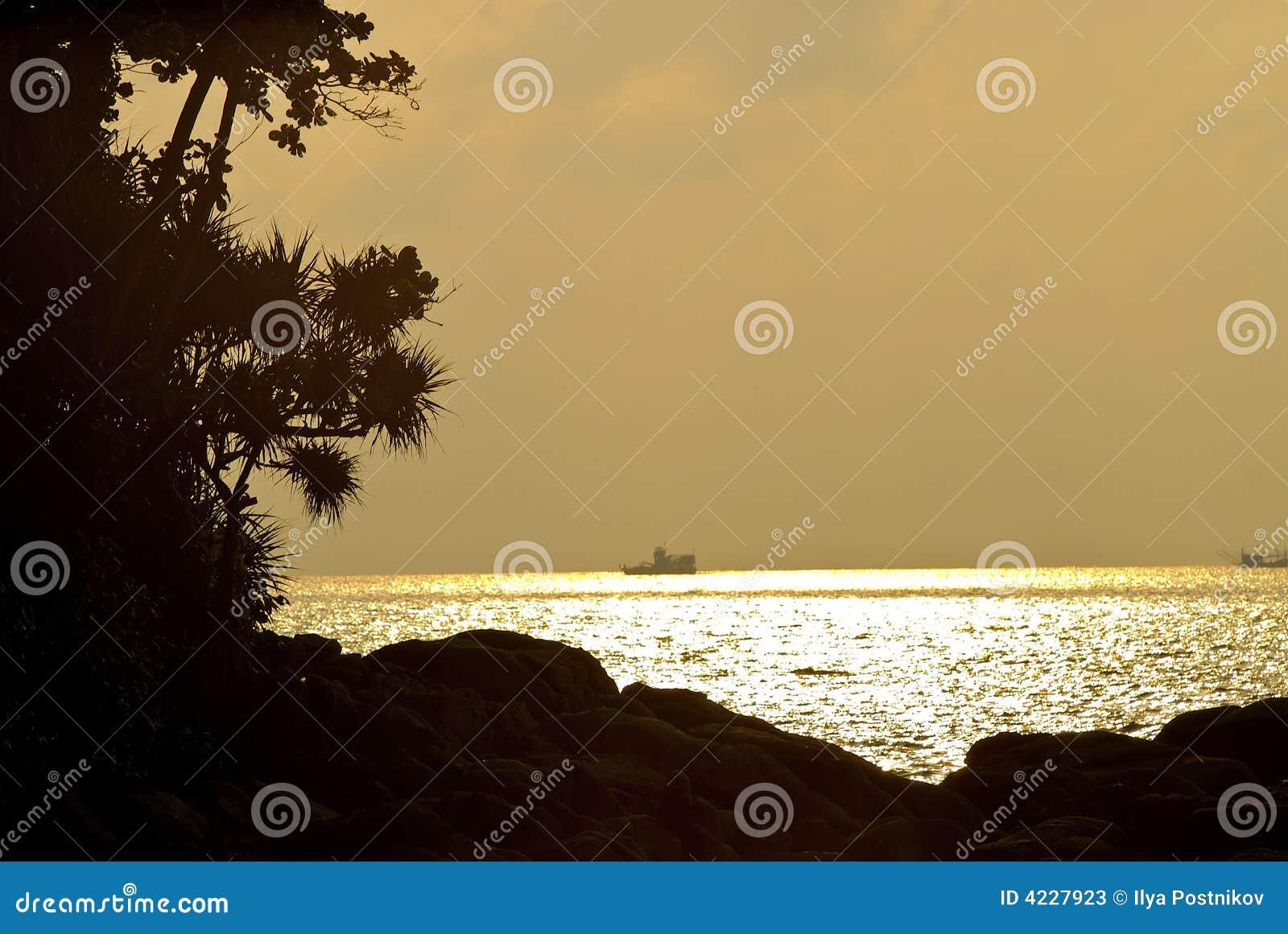 Déclin sur des îles