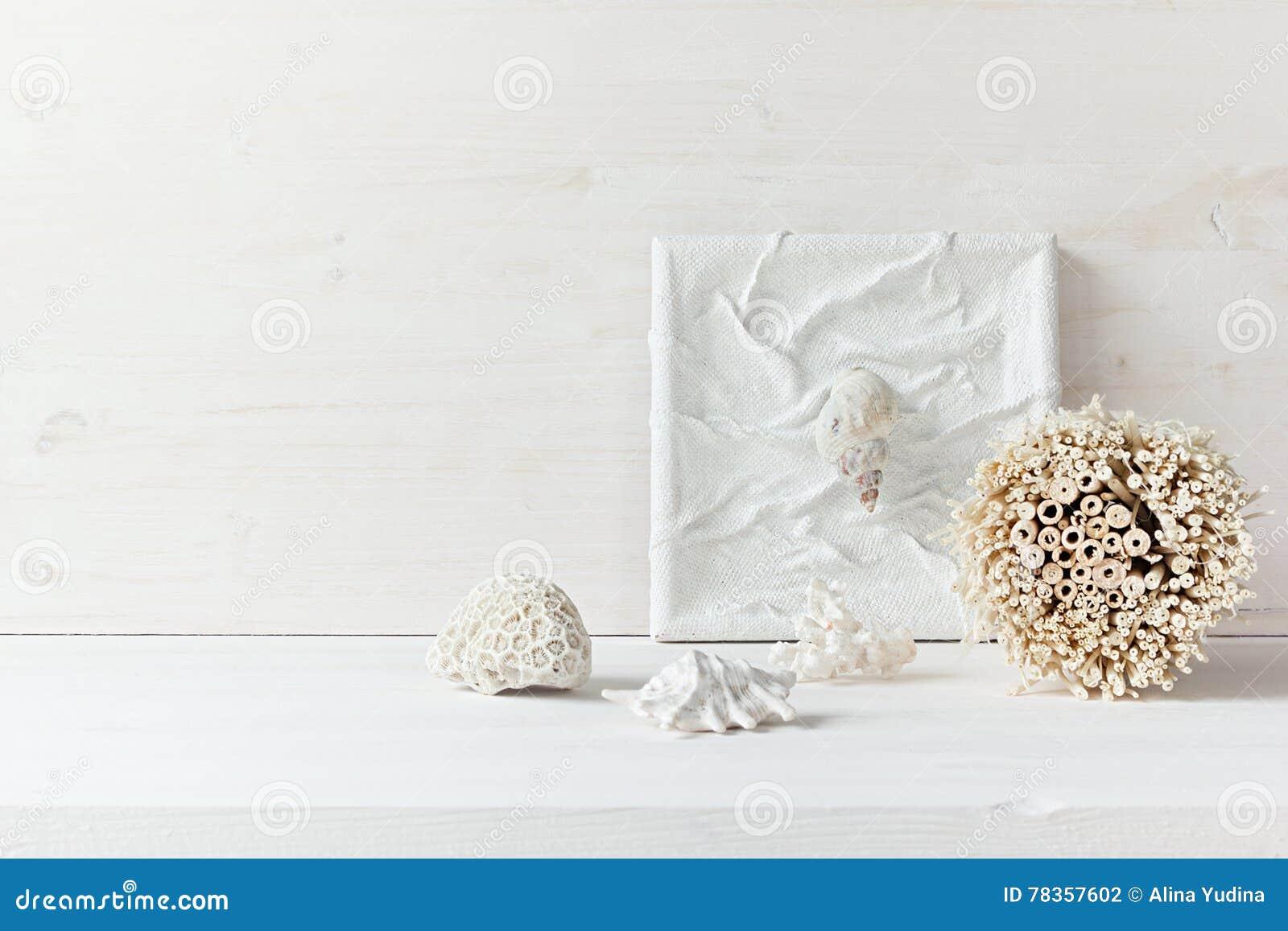 Décor à la maison mou ; coquilles et coraux sur le fond en bois blanc