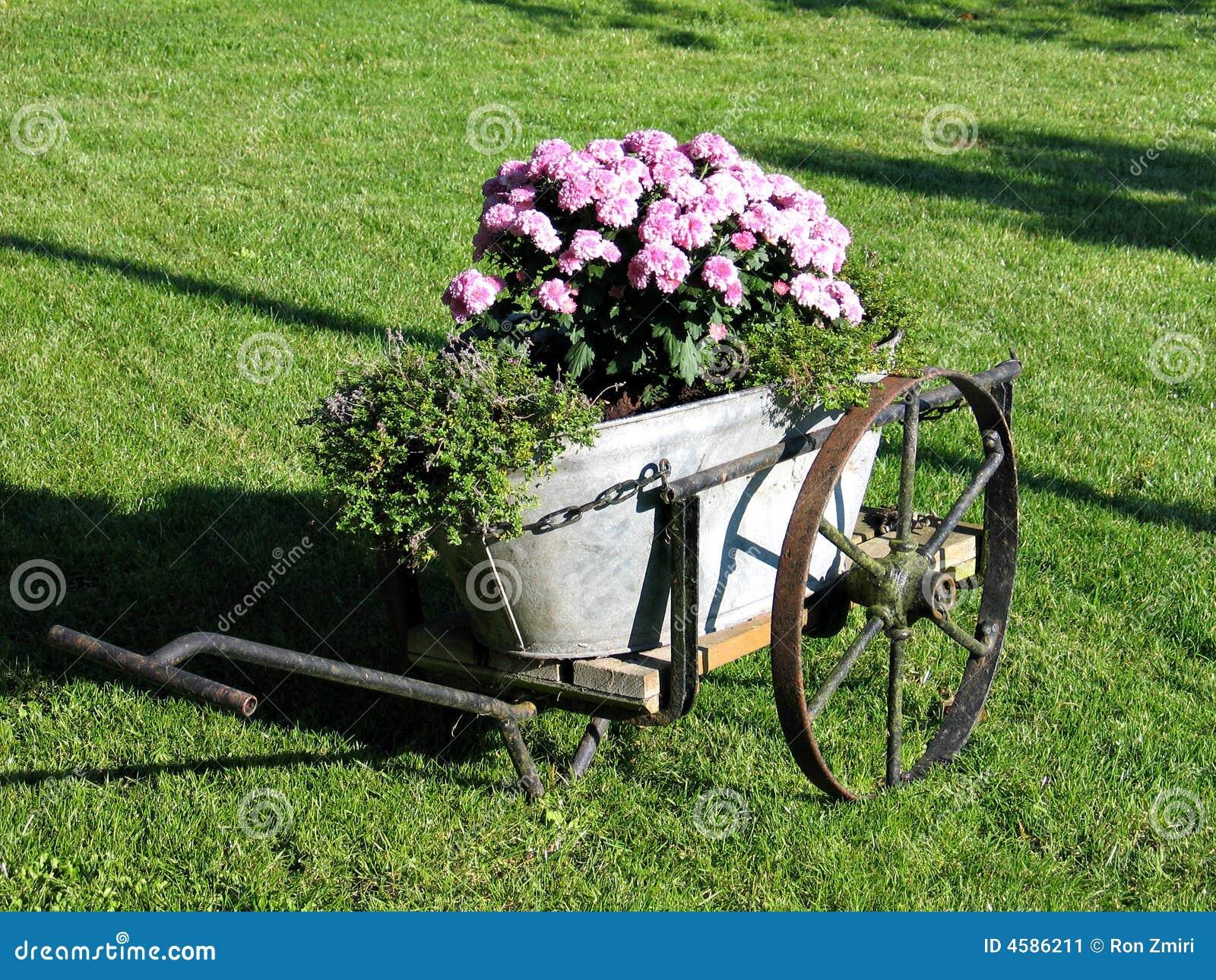 Décor De Jardin Dans Le Vieux Chariot Image Stock Image Du été