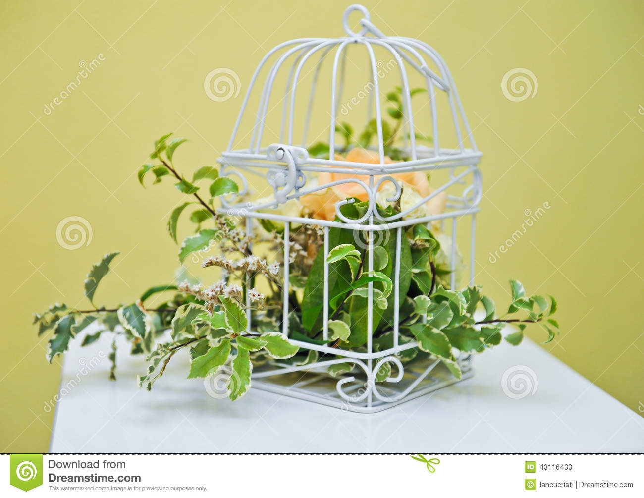 d coration avec la plante verte dans une cage oiseaux photo stock image 43116433. Black Bedroom Furniture Sets. Home Design Ideas