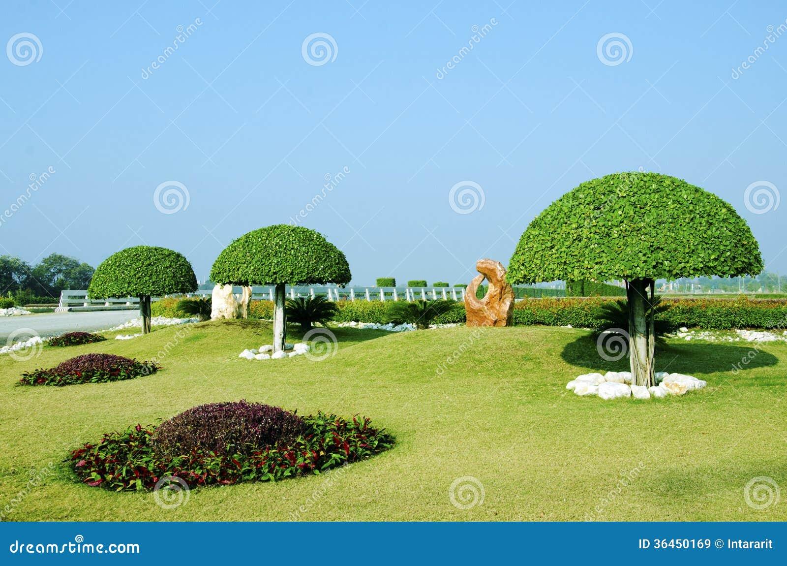 d coration d 39 arbre de jardin images libres de droits image 36450169. Black Bedroom Furniture Sets. Home Design Ideas