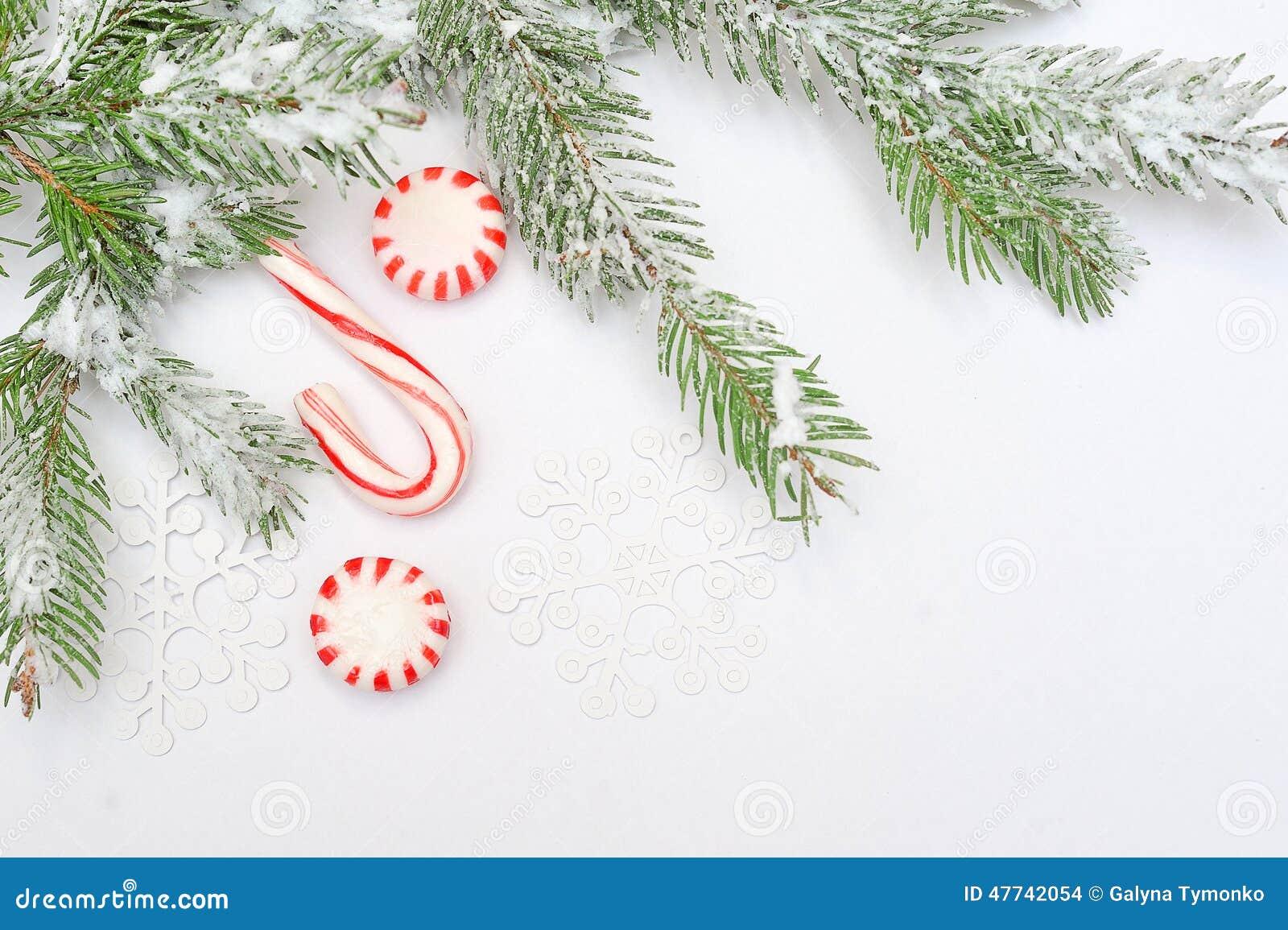 D coration d 39 arbre de no l avec l 39 endroit pour votre - Decoration arbre de noel ...