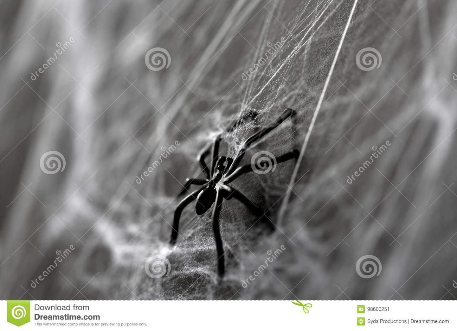 décoration de halloween d'araignée noire de jouet sur la toile d