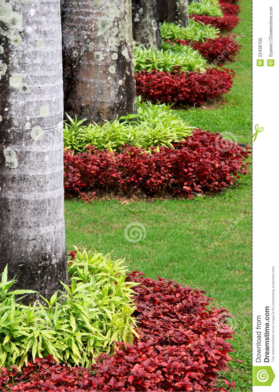 D coration du jardin de centrale photo libre de droits - Decoration du jardin ...