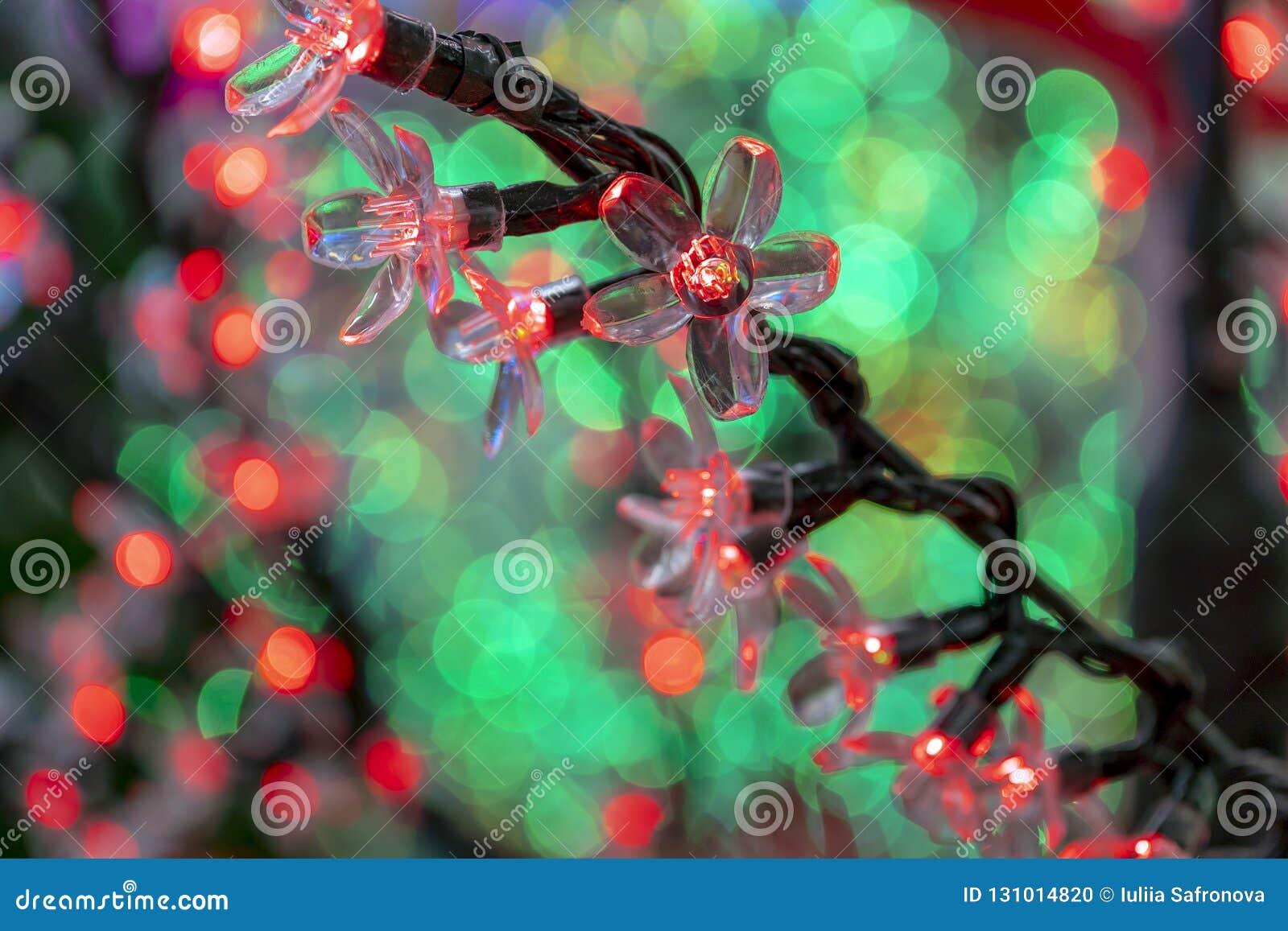 Neon De Decoration Interieur décorations de noël, guirlandes au néon, fleurs rougeoyantes