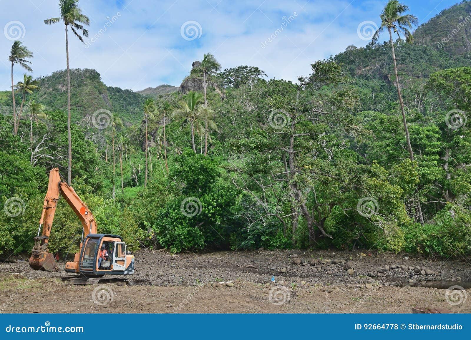 Dégagement de forêt ou étant noté en bas d en raison du développement dans le pays du tiers monde tropical