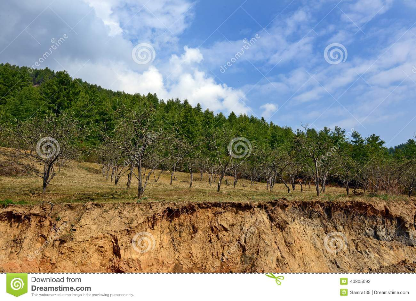 Dégradation de terre