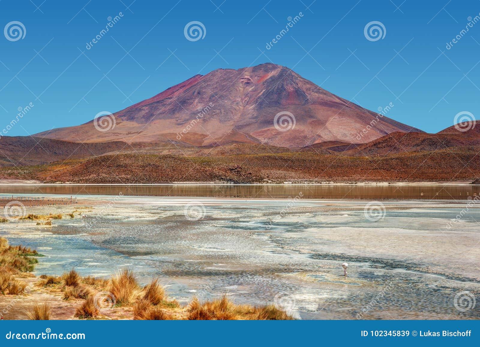 Désert d Atacama Bolivie