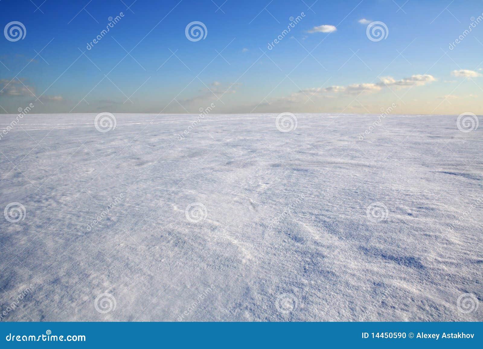 désert froid