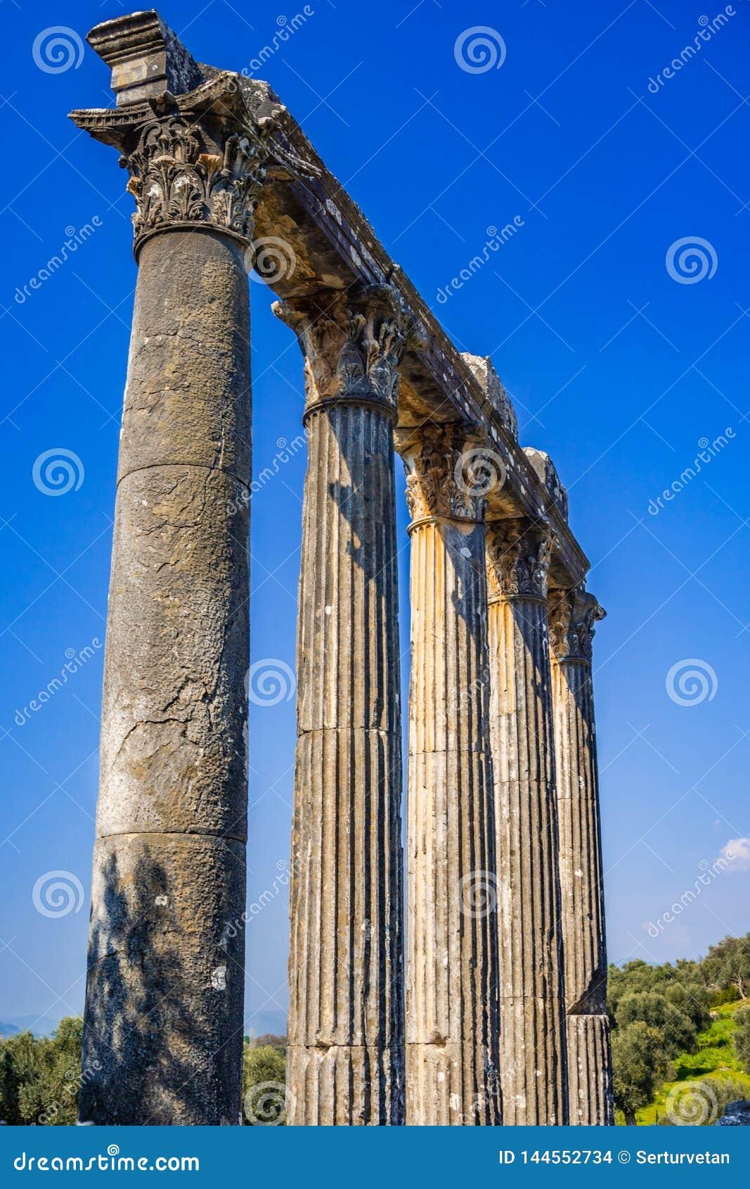 Détail d architrave et de colonne de ville antique d Euromos - d Euromus Temple de Zeus Lepsinos