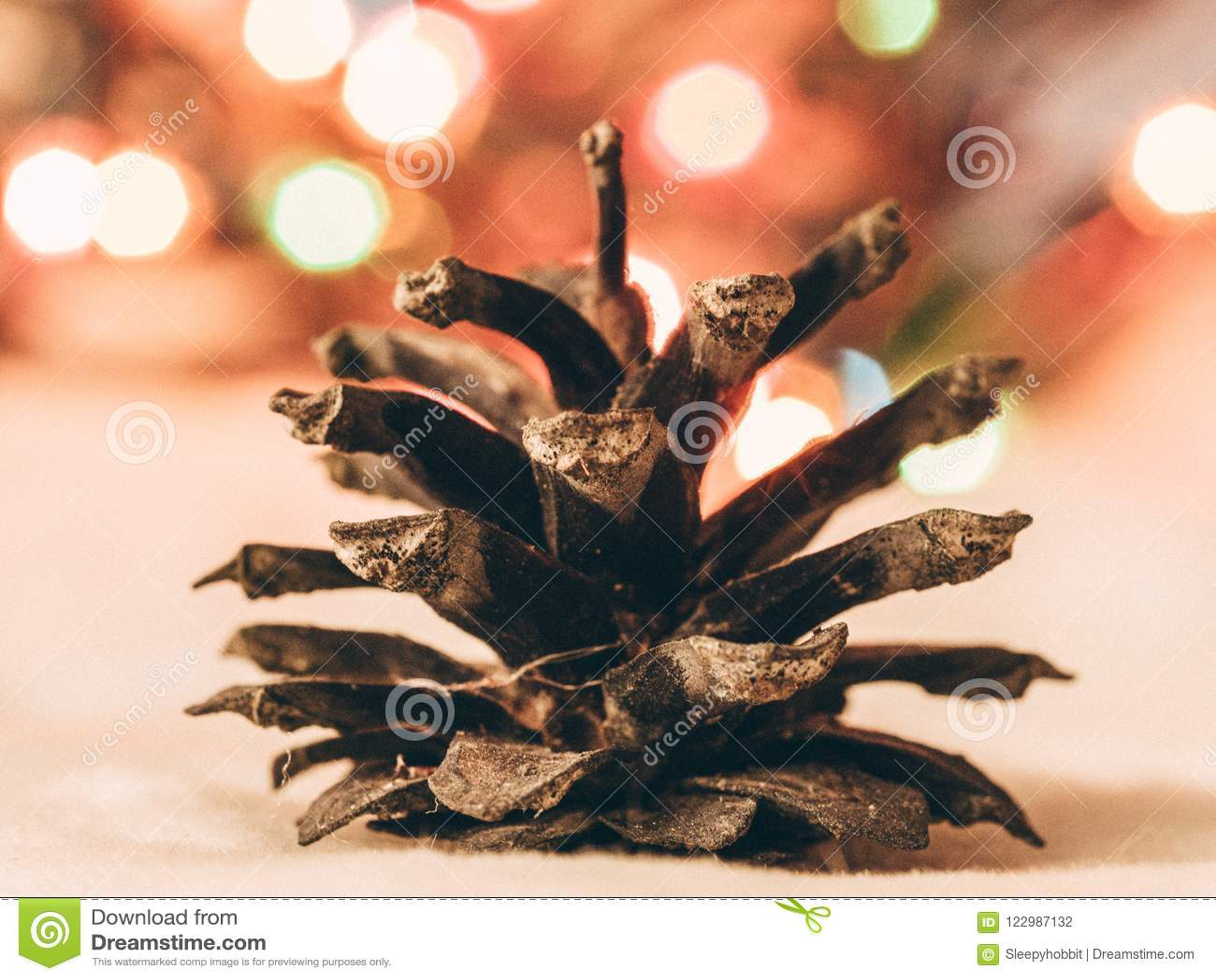 Détail d un cône de pin et lumières de Noël à l arrière-plan