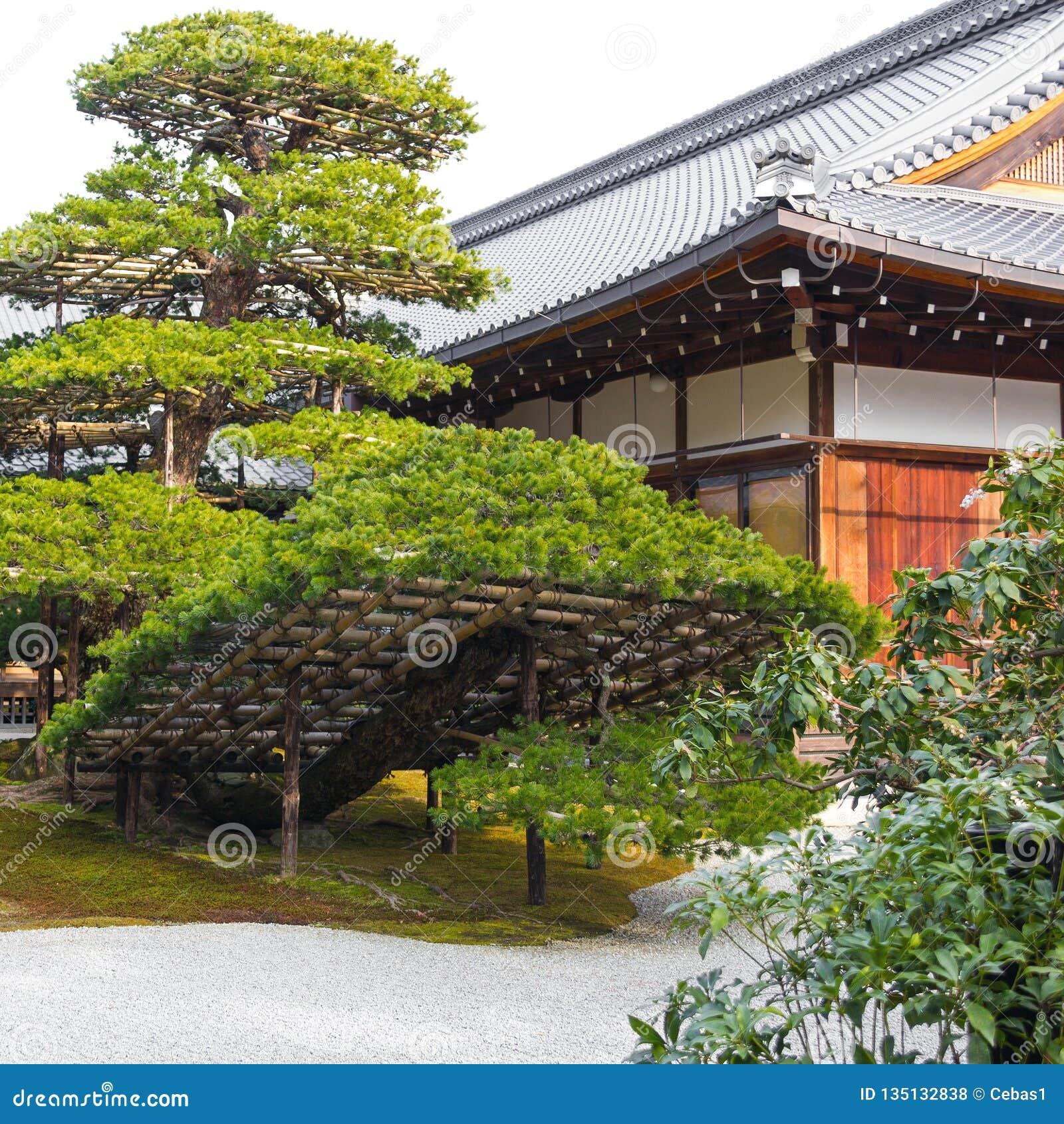 Detail Japonais Amenage En Parc Traditionnel De Jardin Au Japon Photo Stock Image Du Personne Asie 135132838