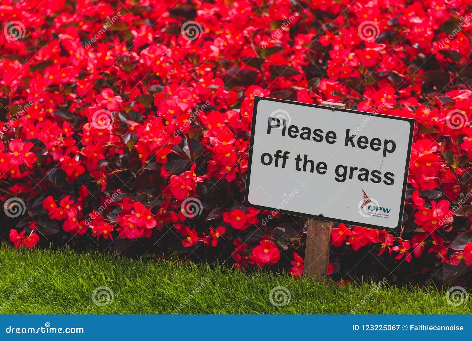 Détail Keep off le parc de vert du ` s de St Stephen de connexion d herbe dedans