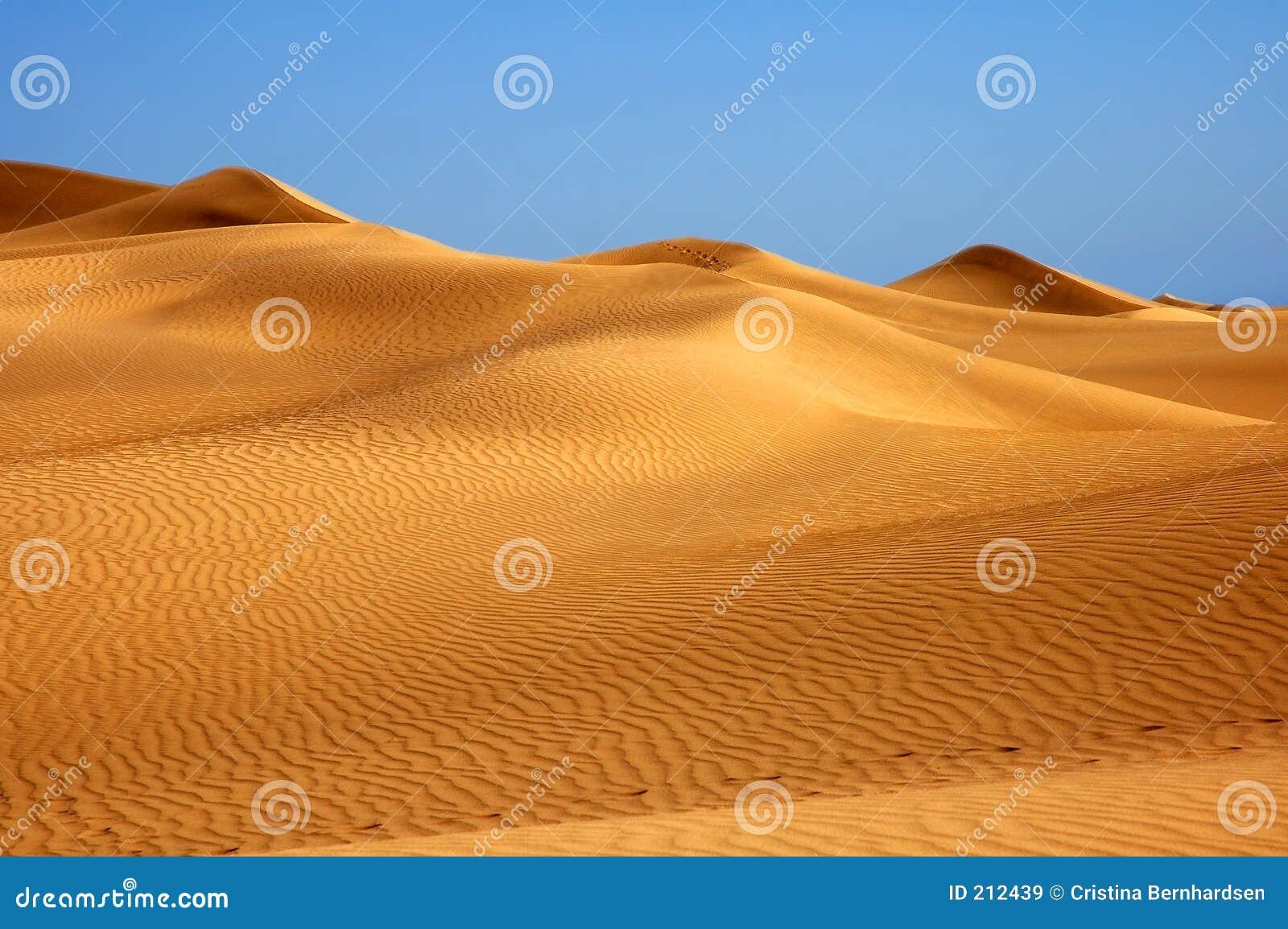 Détruit dans le désert ?