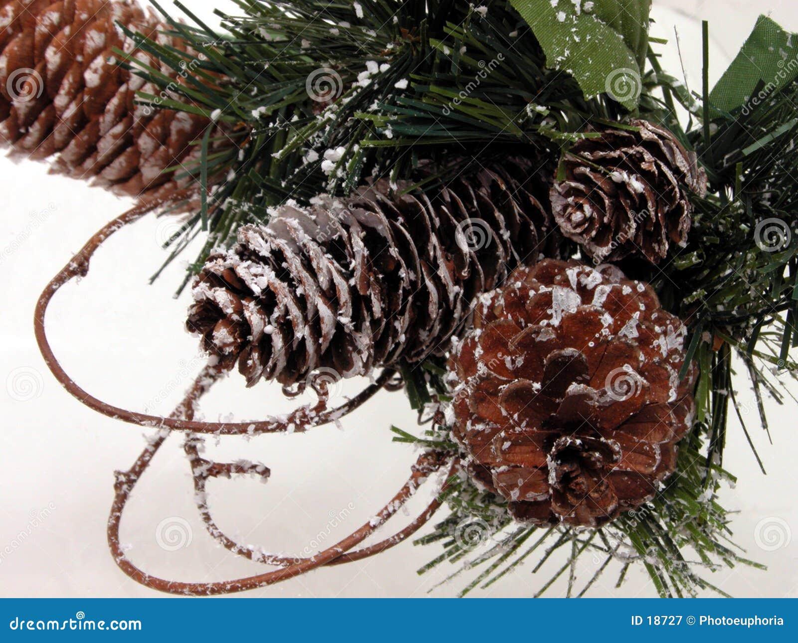 Día de fiesta y estacional: Cono del pino de la Navidad y nieve artificial