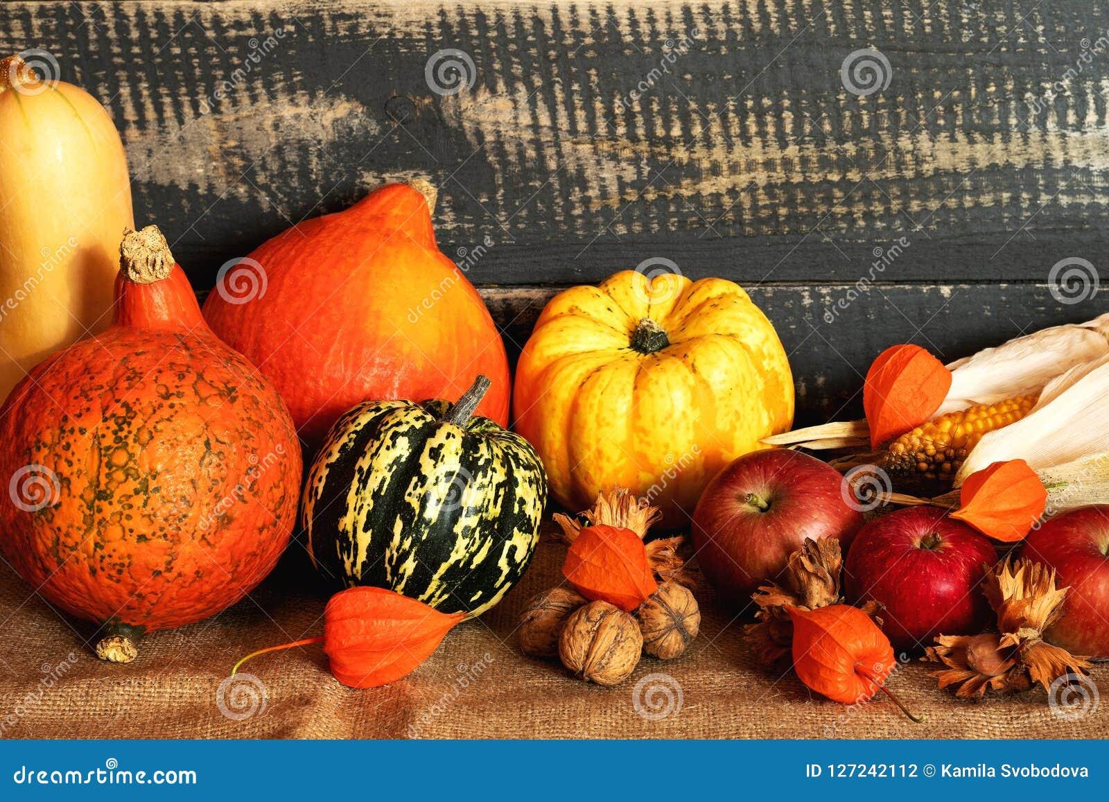 Día de la acción de gracias de la cosecha del otoño