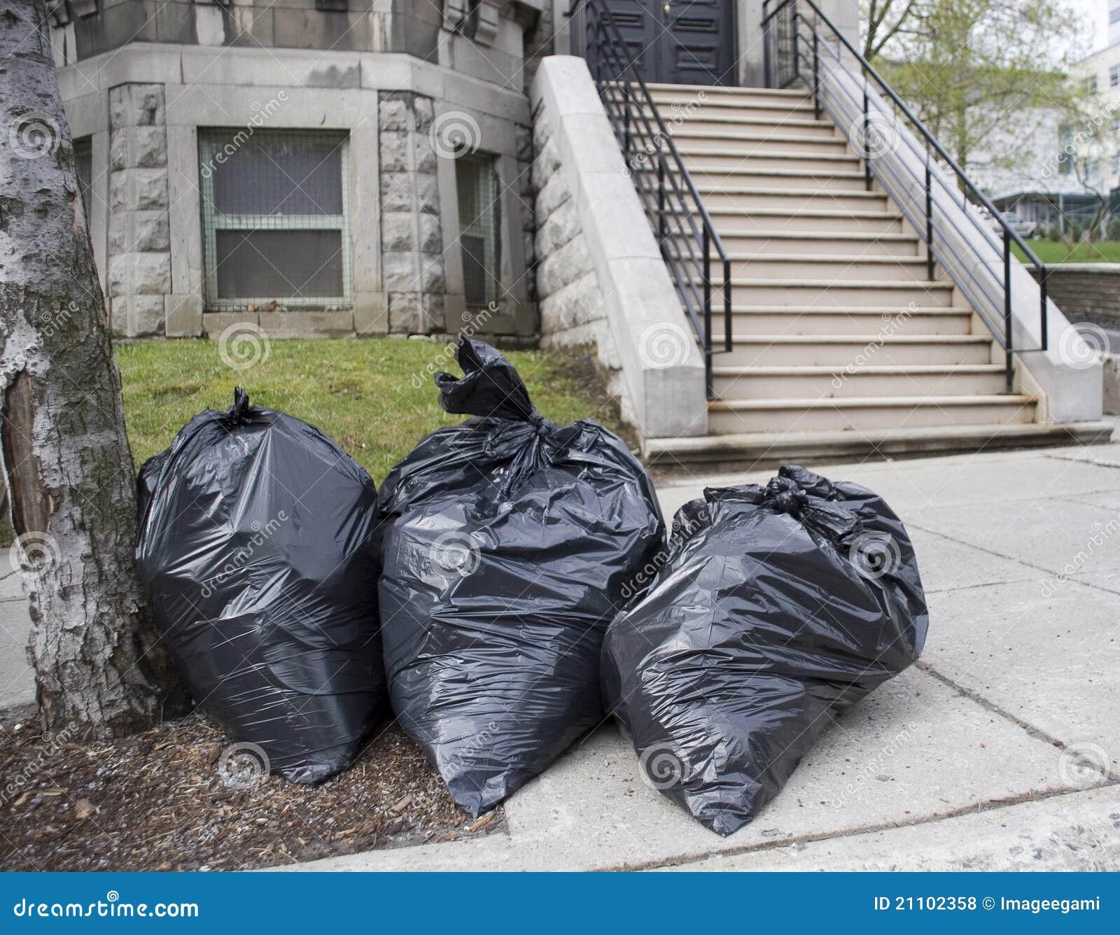 Día de la basura