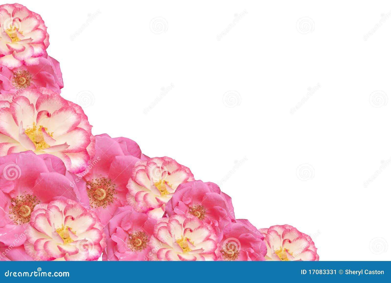 Día De Madres Color De Rosa De Las Tarjetas Del Día De San Valentín ...