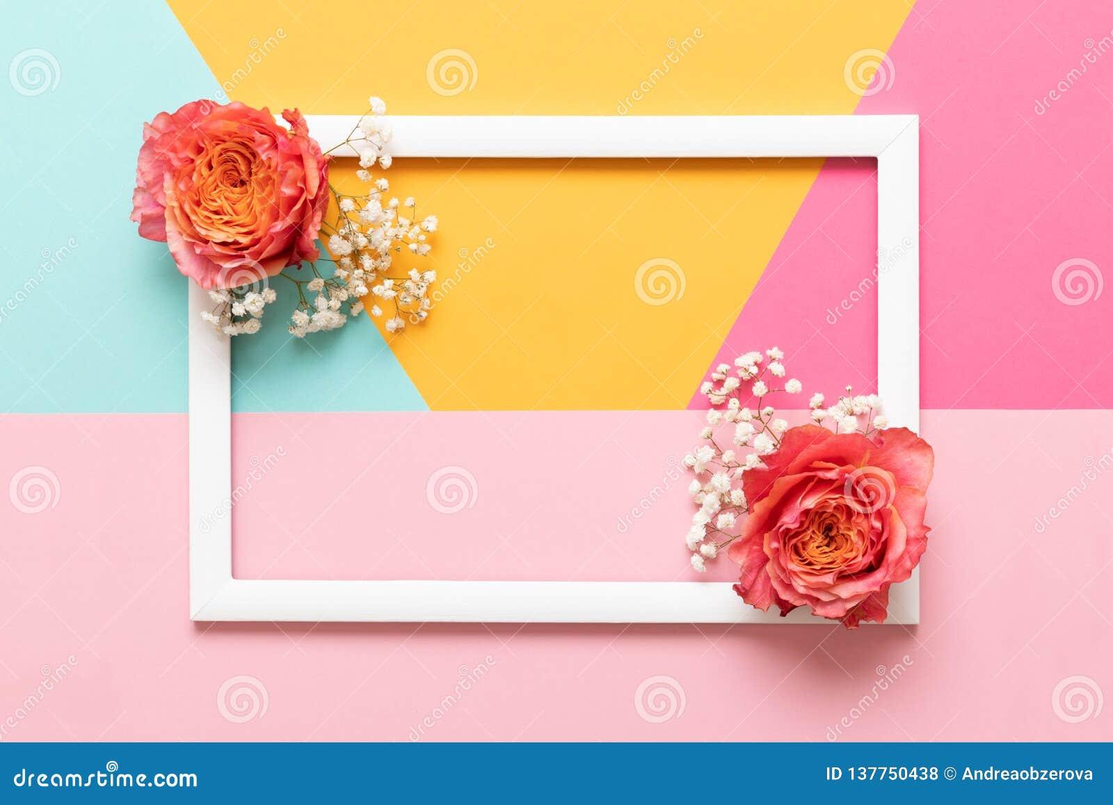 Día de madres feliz, día para mujer, día de San Valentín o fondo coloreado en colores pastel del cumpleaños Mofa plana de la ende