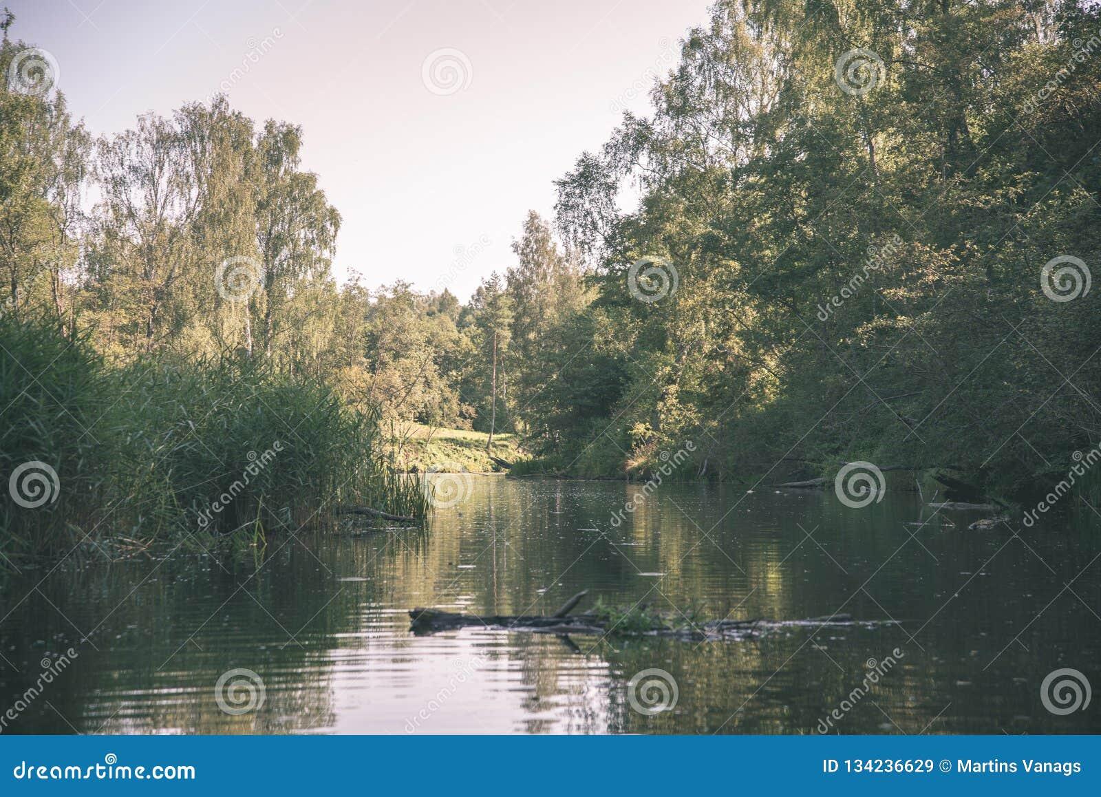 Día de verano en el agua en el río tranquilo incluido en bosques con los acantilados y la madera seca - mirada retra de la piedra