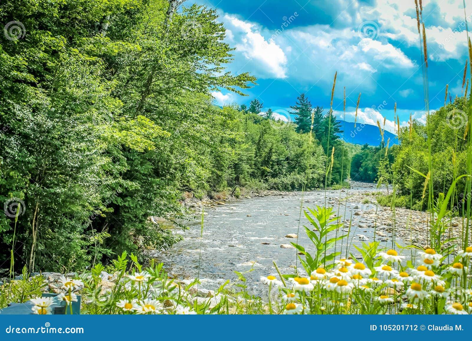 Día de verano en las montañas