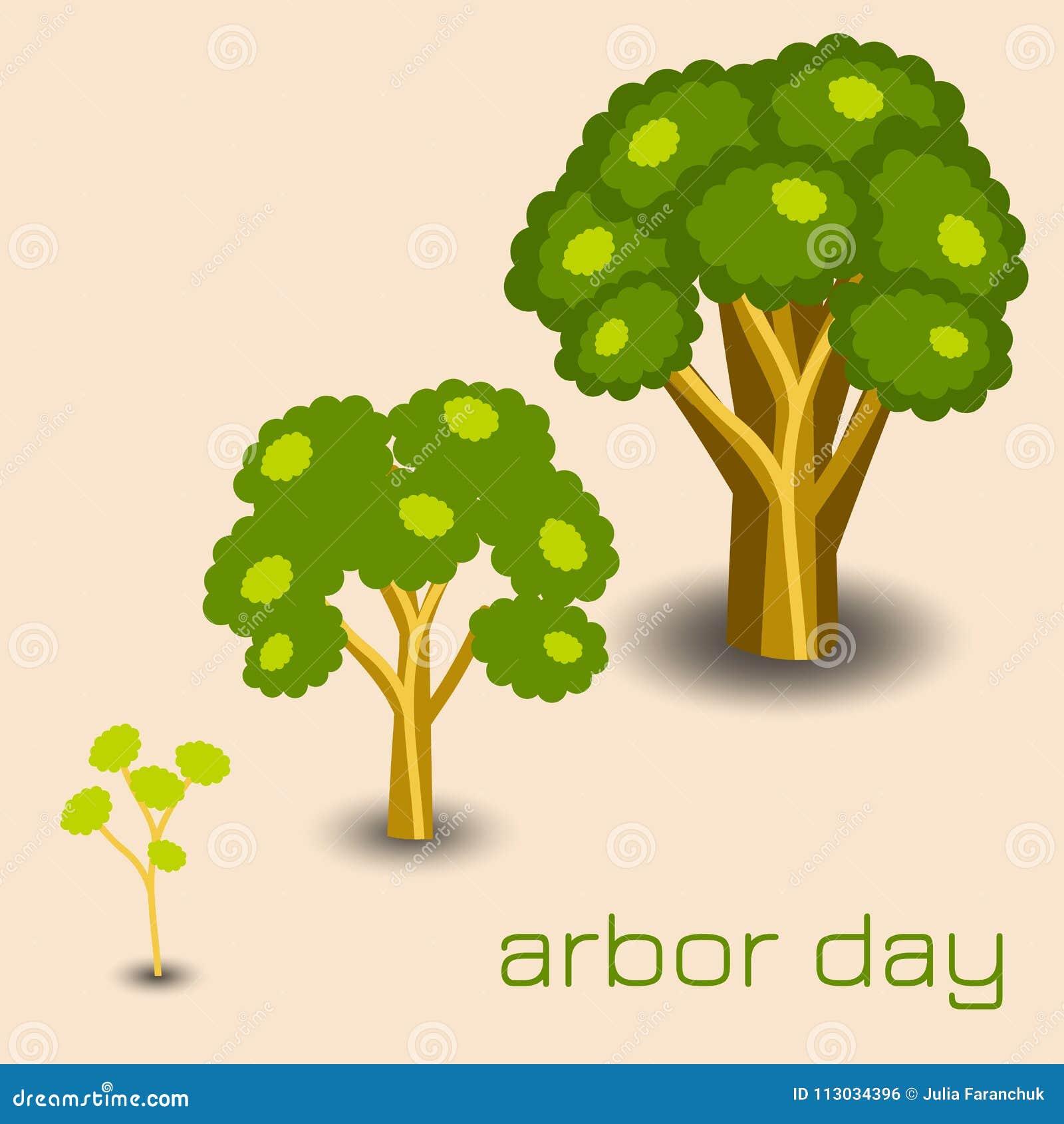 Día del árbol nacional Etapas del crecimiento del árbol